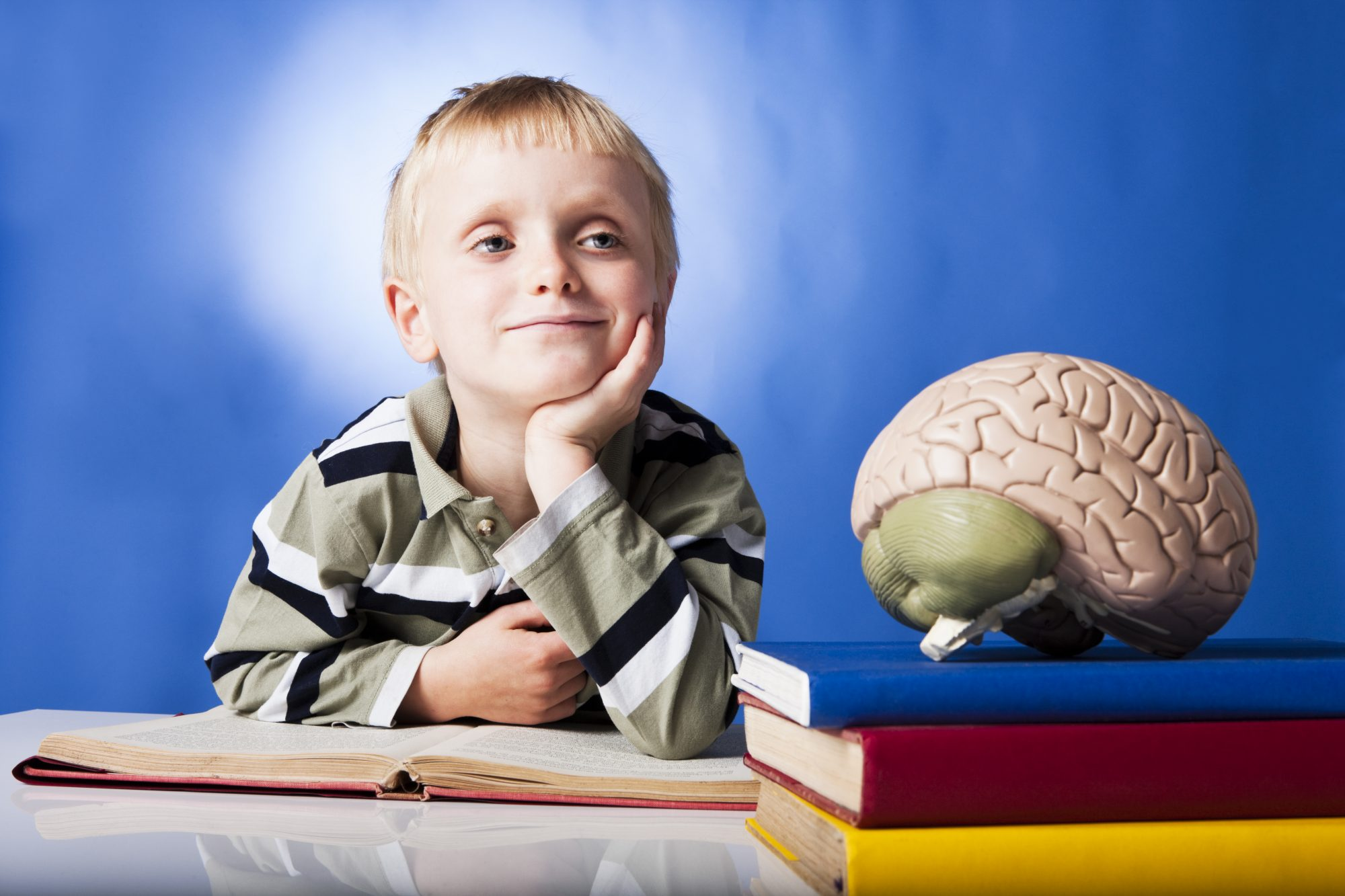 Child, Books, and Brain Model