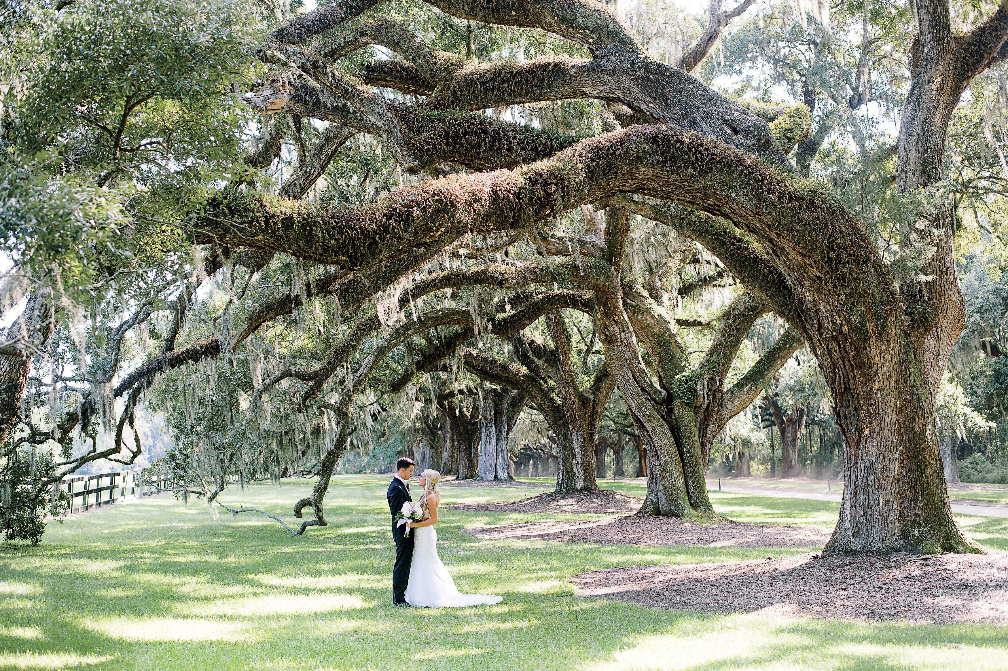 Boone Hall Plantation South Carolina Wedding Venues