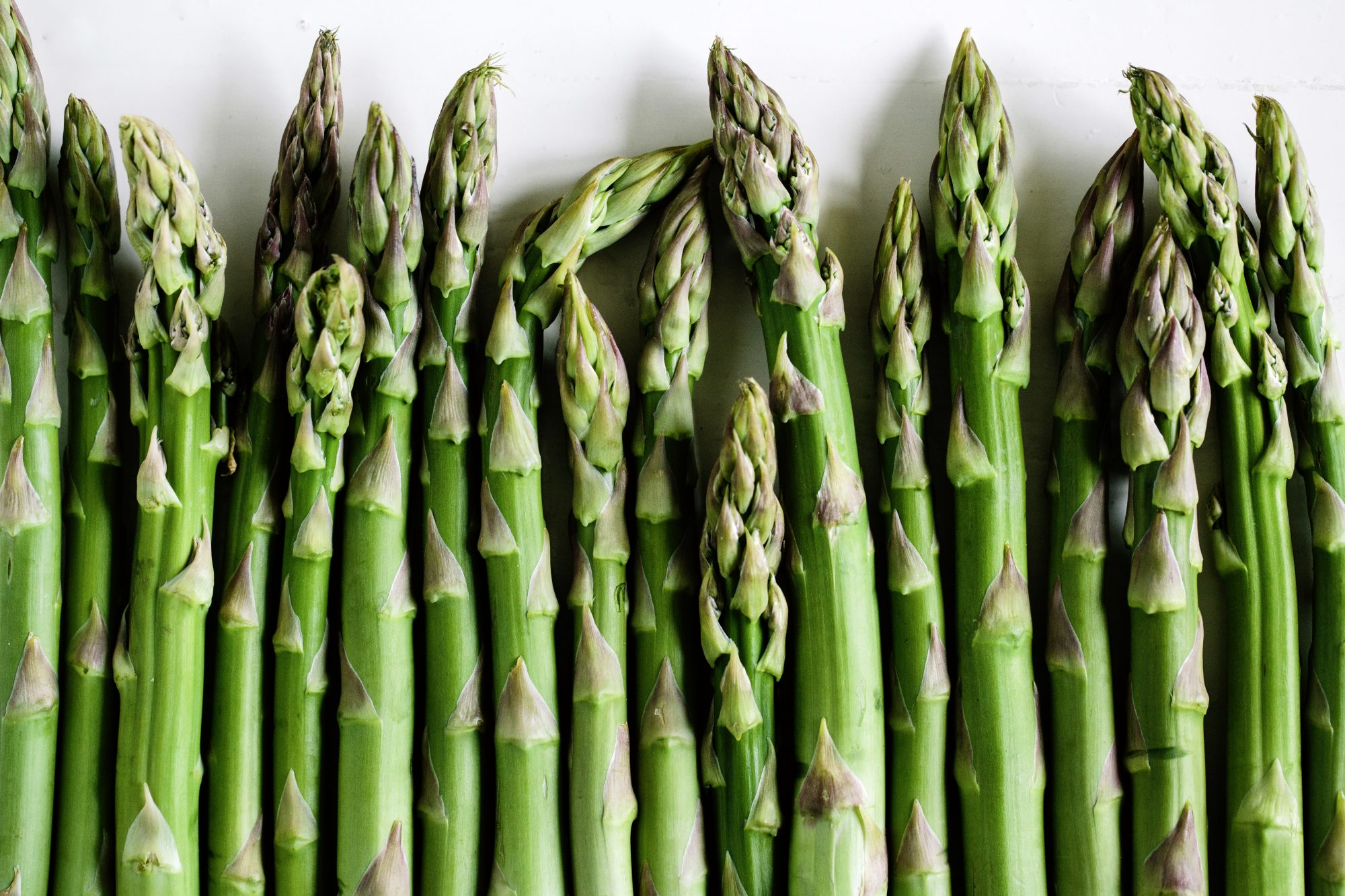 Asparagus in a Row