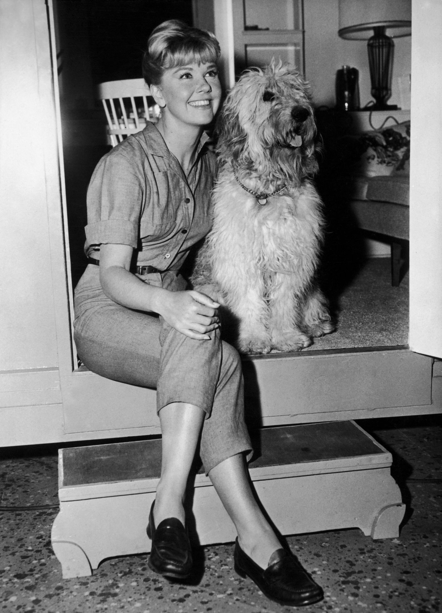 Doris Day Dog