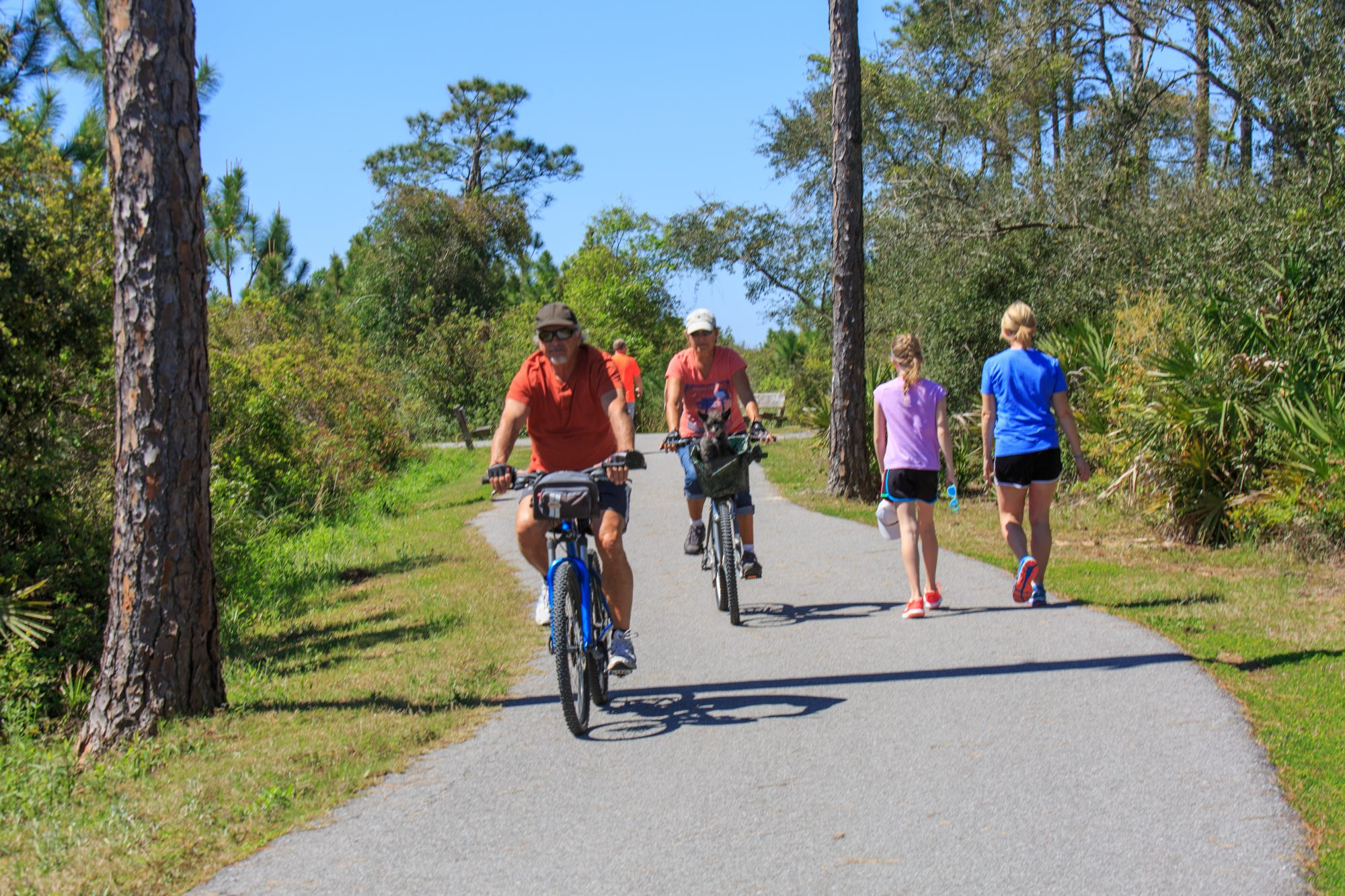 Orange Beach Back Country Trail