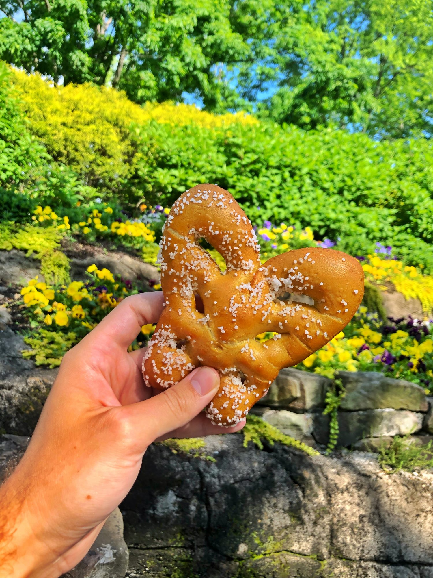 10 Foods You Can Get at Dollywood That Are Worth the Trip Alone img_9481