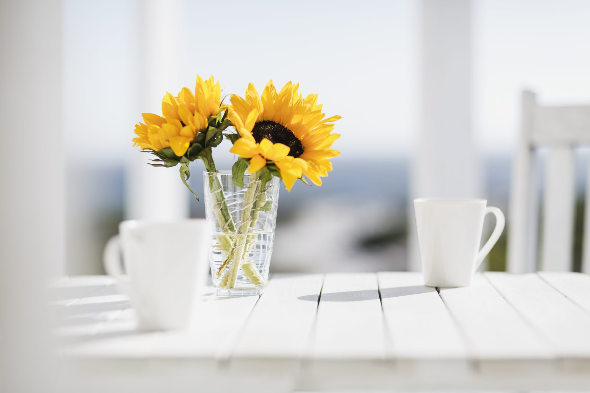 Table with Flowers and Ocean View