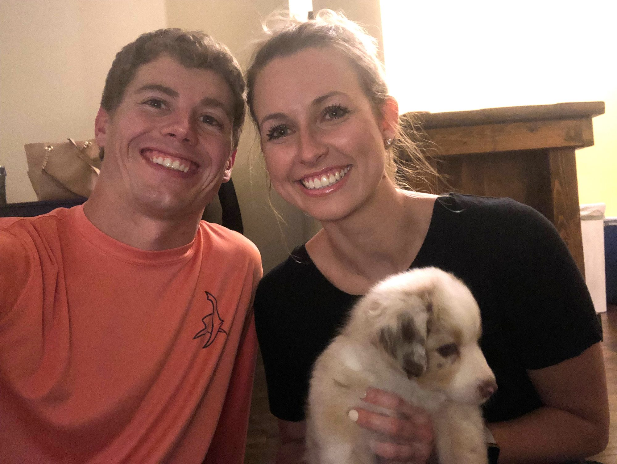 couple meets through puppy