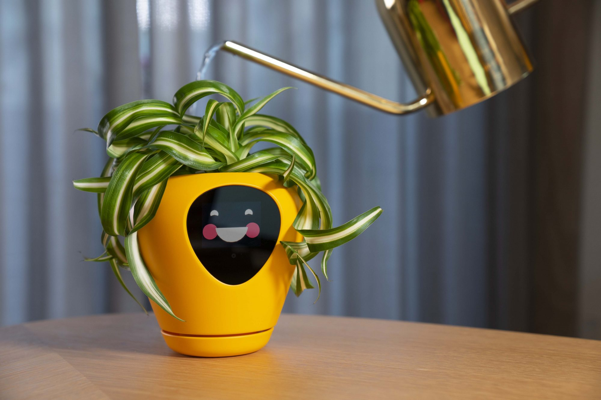 Lua Smart Planter Smile