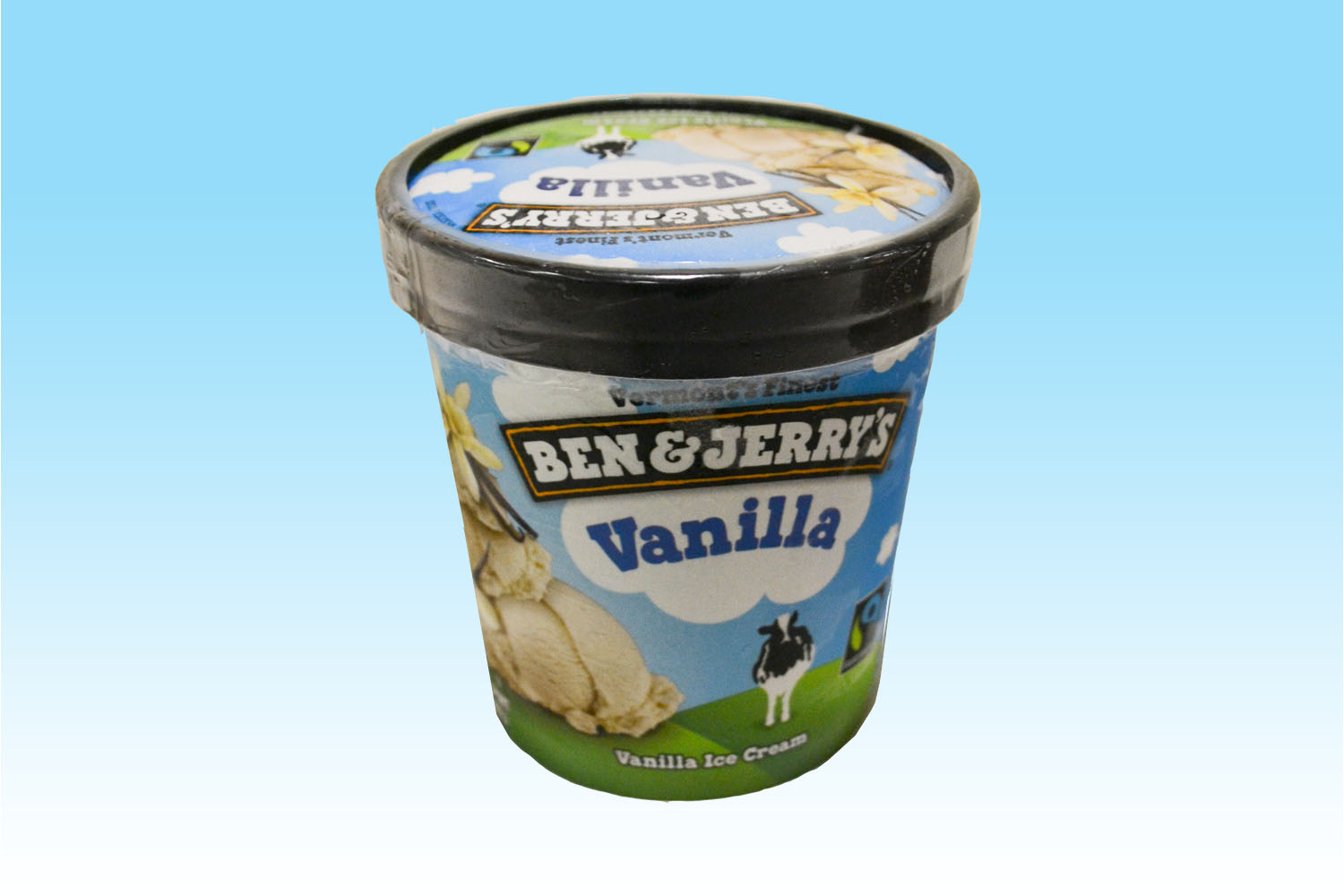 Ben & Jerry's Vanilla Ice Cream