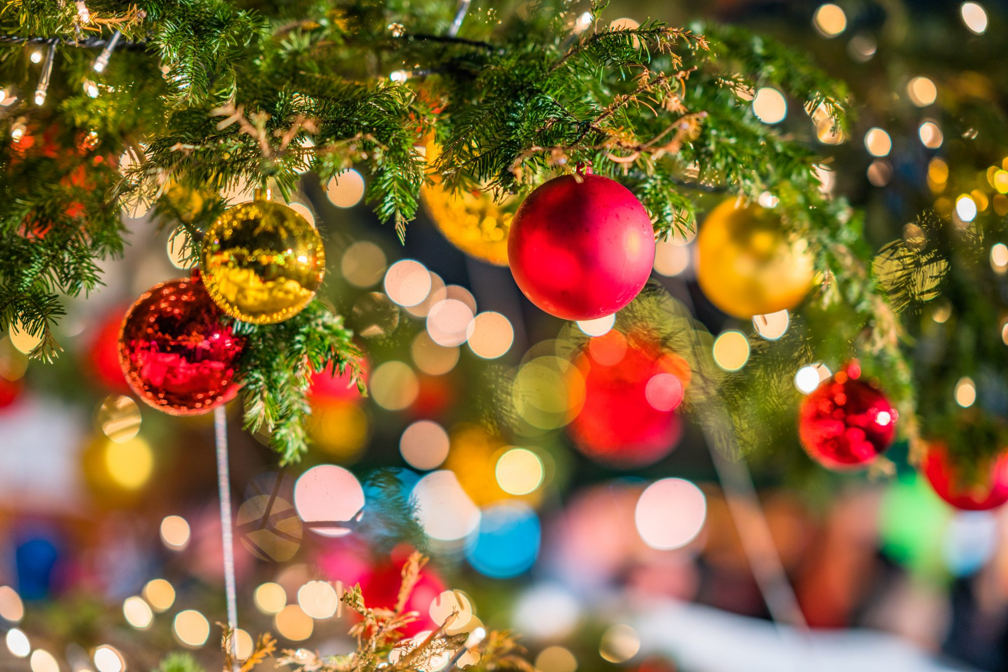 Why You Should Plan a Trip to Anderson, South Carolina, This Christmas