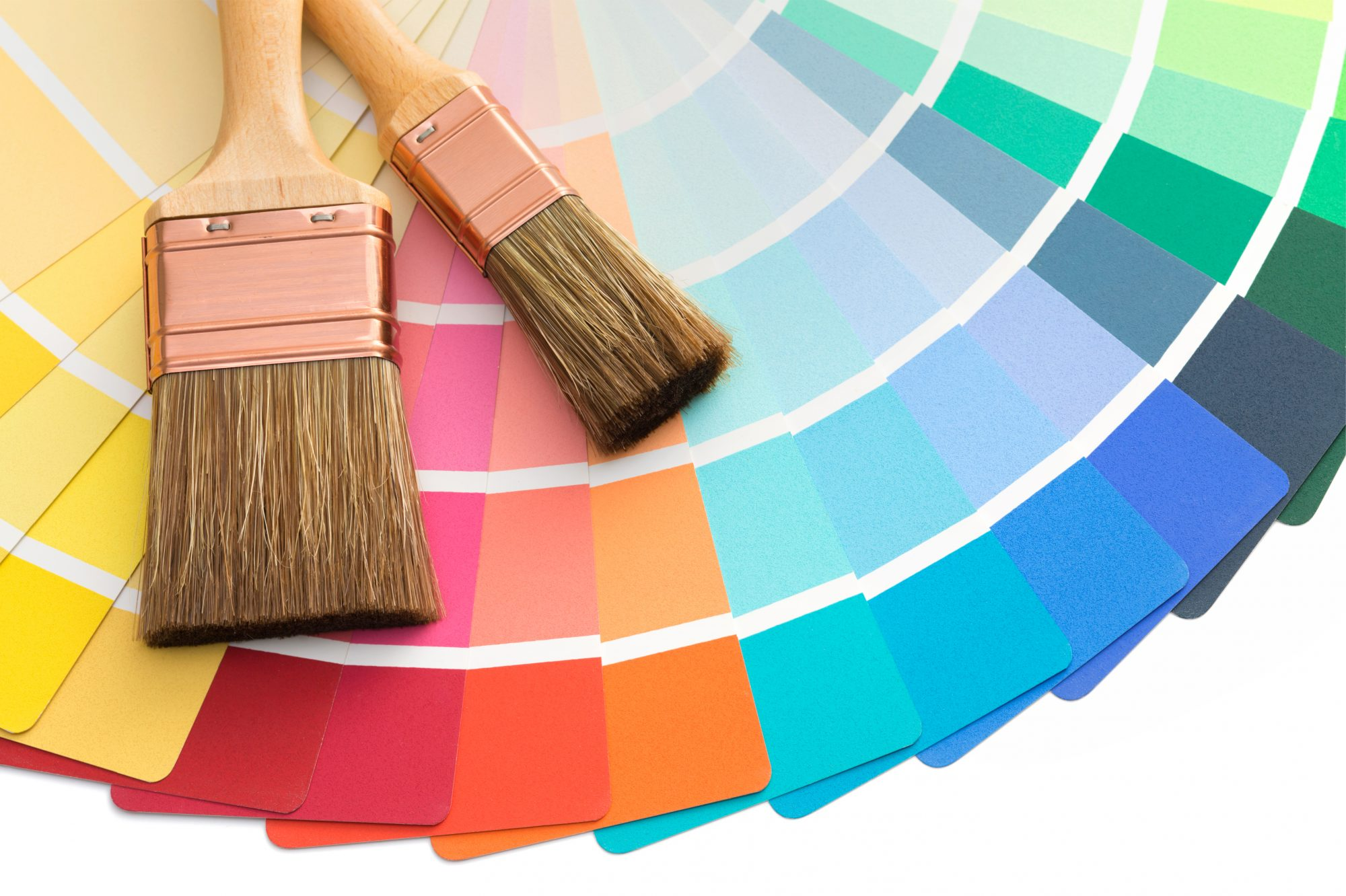 Color Palette and Paint Brushes
