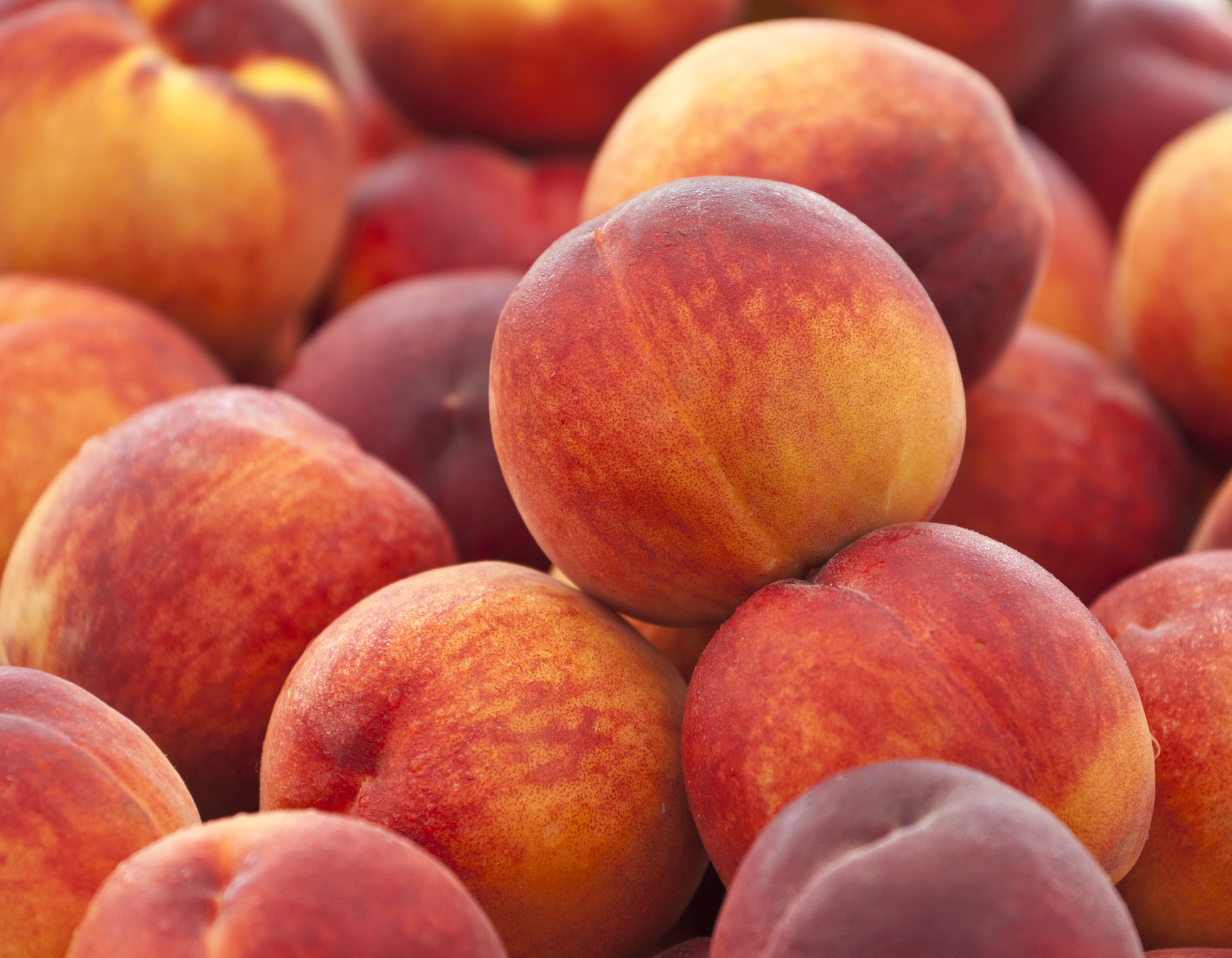 Heap of Fresh Peaches