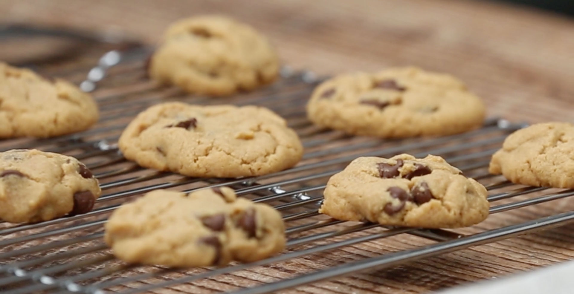 Flourless PB Chocolate Chip Cookies Still
