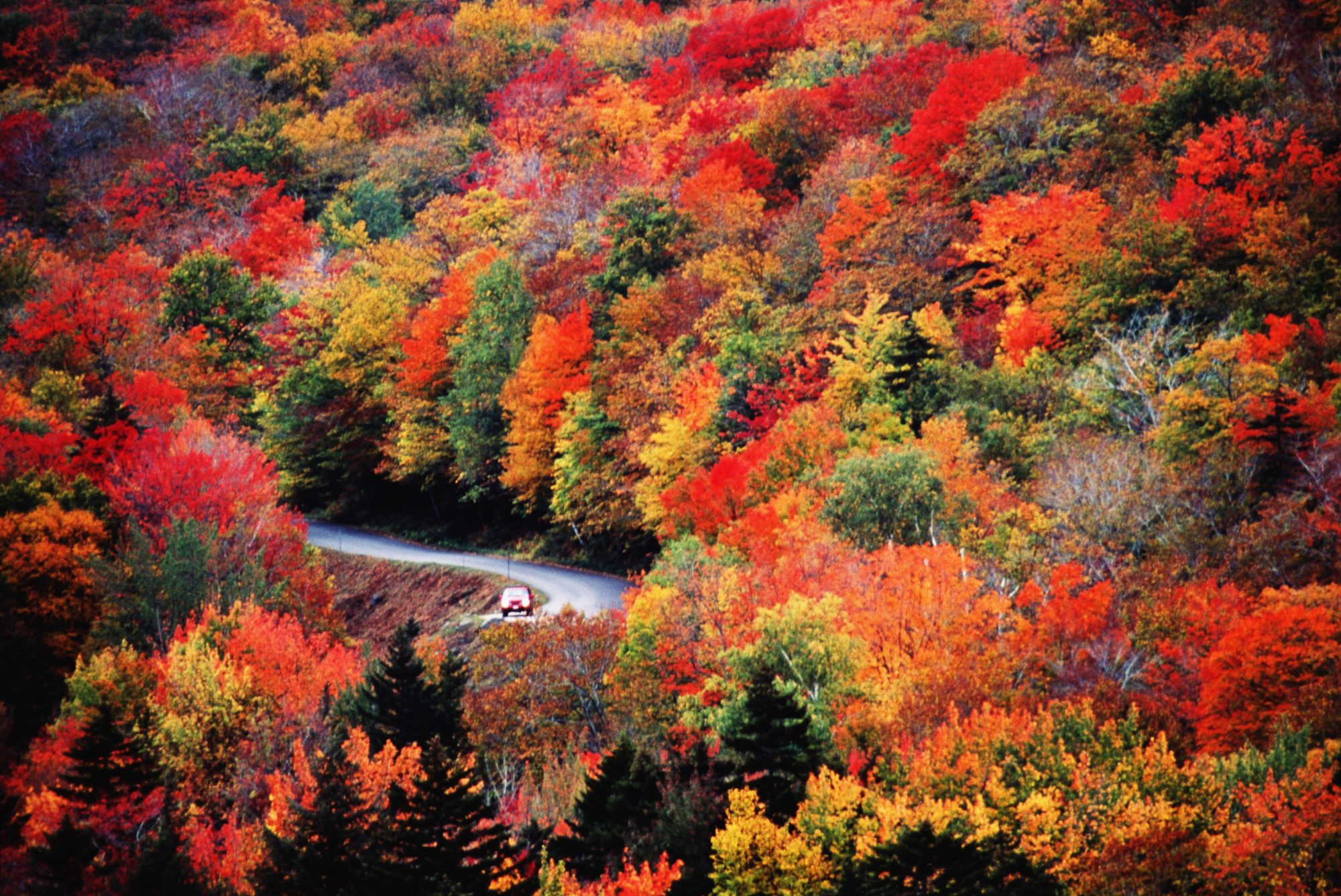Peak Fall Foliage Will Likely Arrive Late This Year