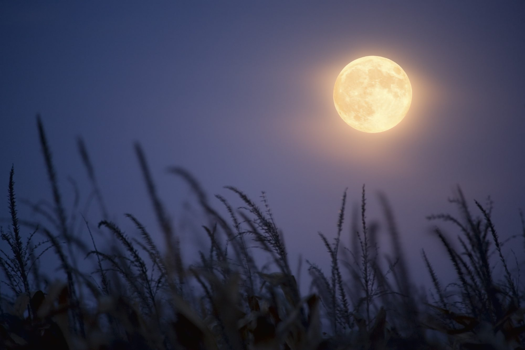 A rare full Harvest Moon expected for this coming Friday the 13th