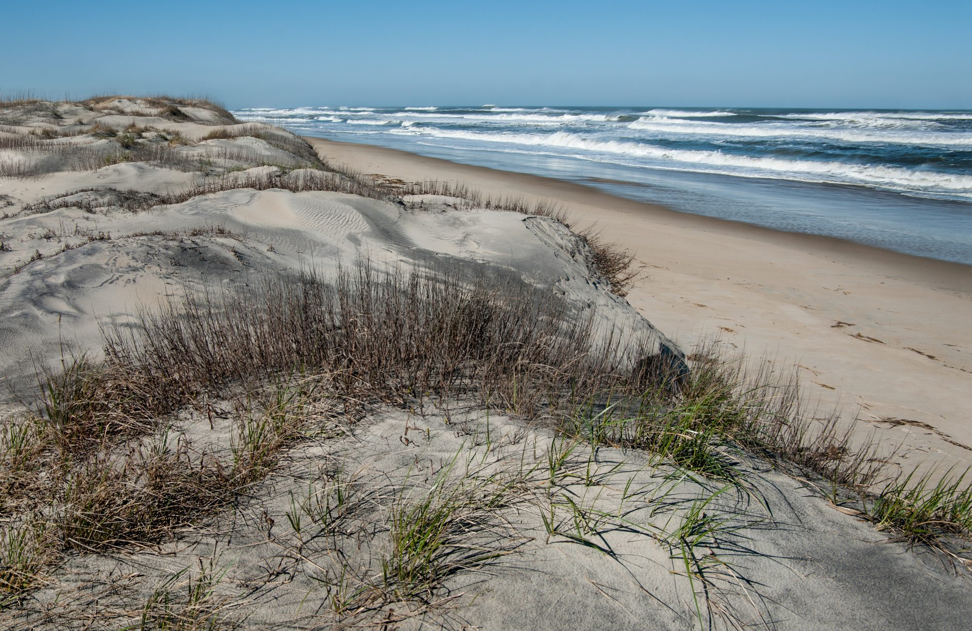 WATCH: Hurricane Dorian Exposed a Remarkable Sight on This Outer Banks Beach
