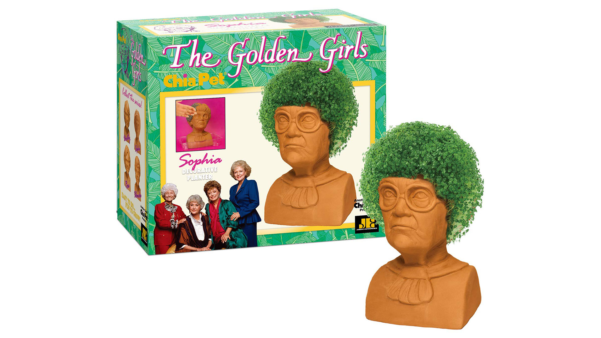Golden Girl Chia Pet Sophia