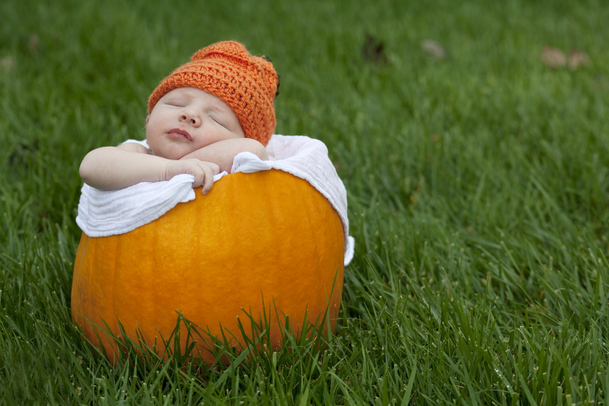 Fall Babies May Be More Likely to Live to 100, Study Finds