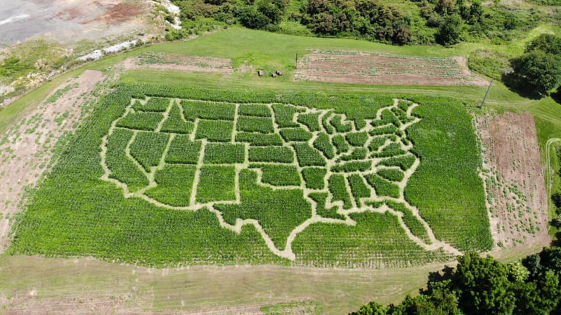 USA Map Corn Maze