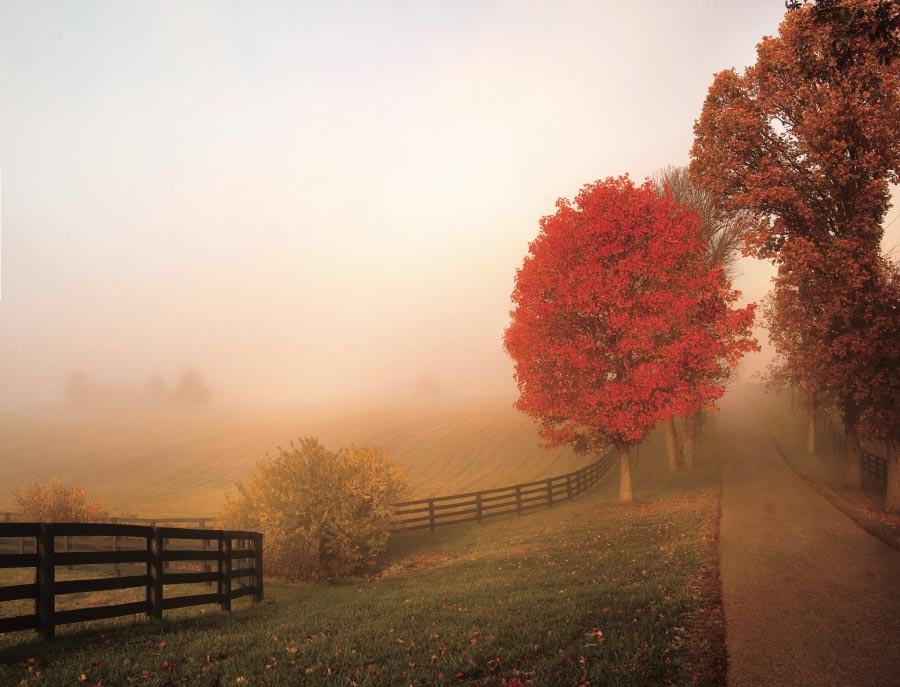 7 National Parks in the South That Are Must-See Spots for Fall Color