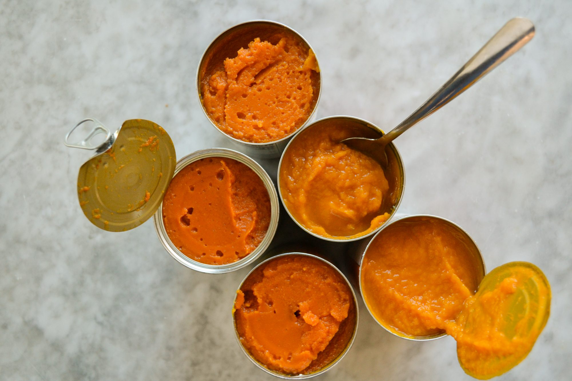 Pumpkin Puree Taste Test