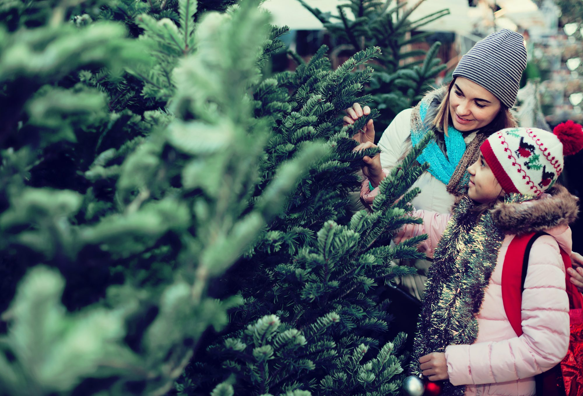 Mother Daughter Christmas Tree Shopping