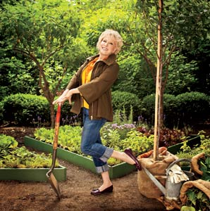 Bette Midler's Park Restoration Project