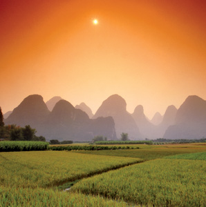Finding Traditional Healing in China