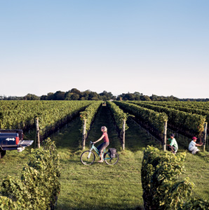 Lee Brothers' Guide to North Fork, Long Island