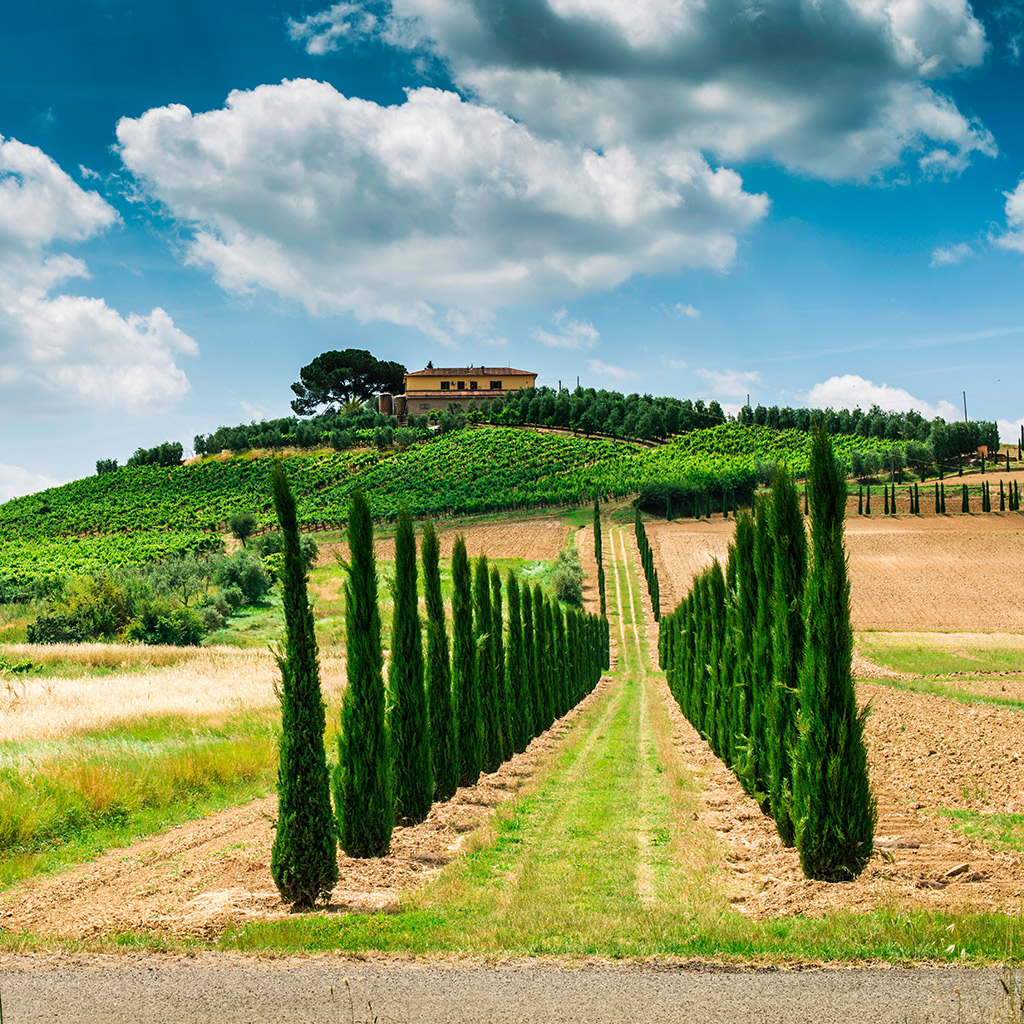 Best Wine Country Drives in Tuscany