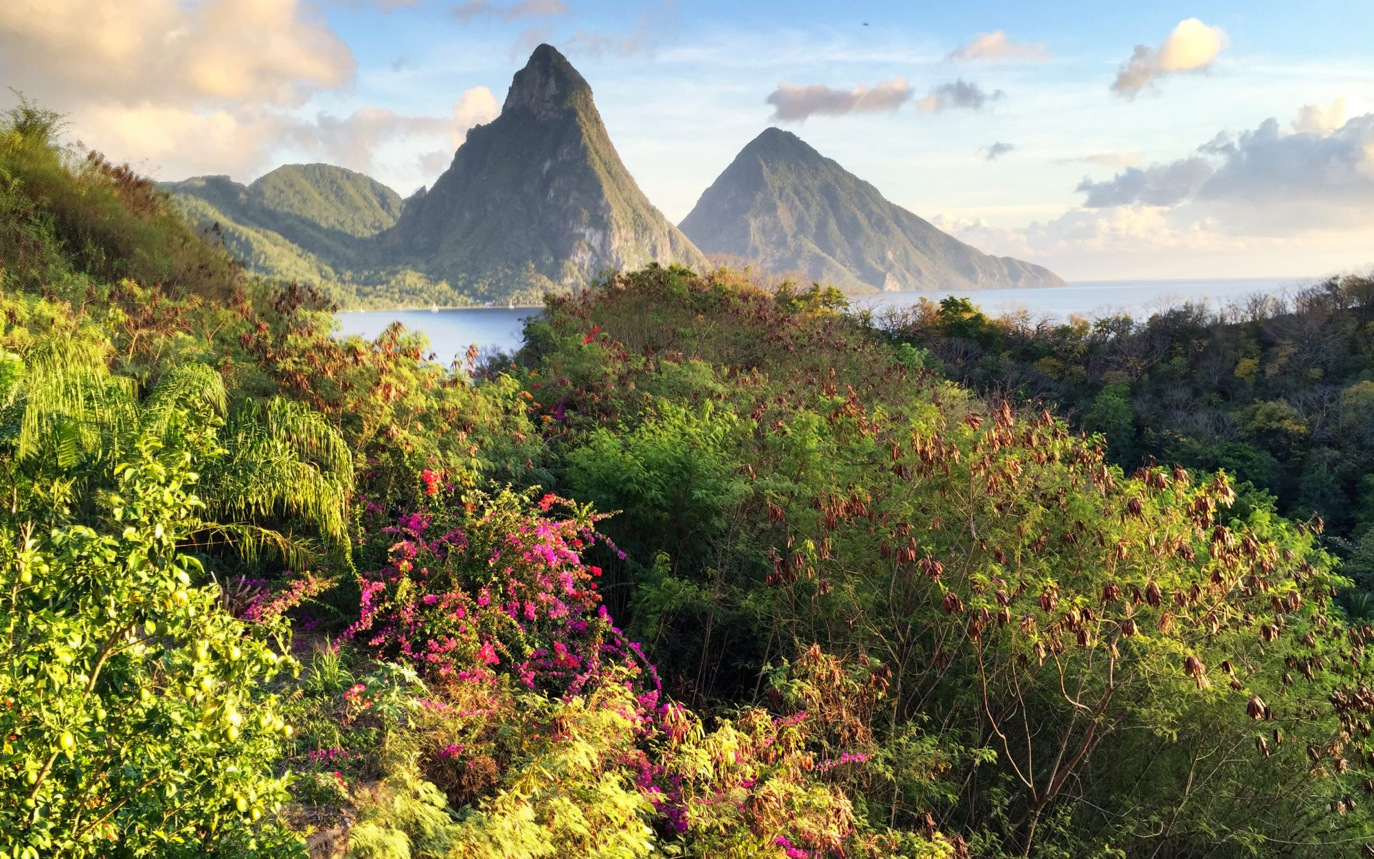 On St. Lucia, Chocolate and Hospitality Go on Honeymoon