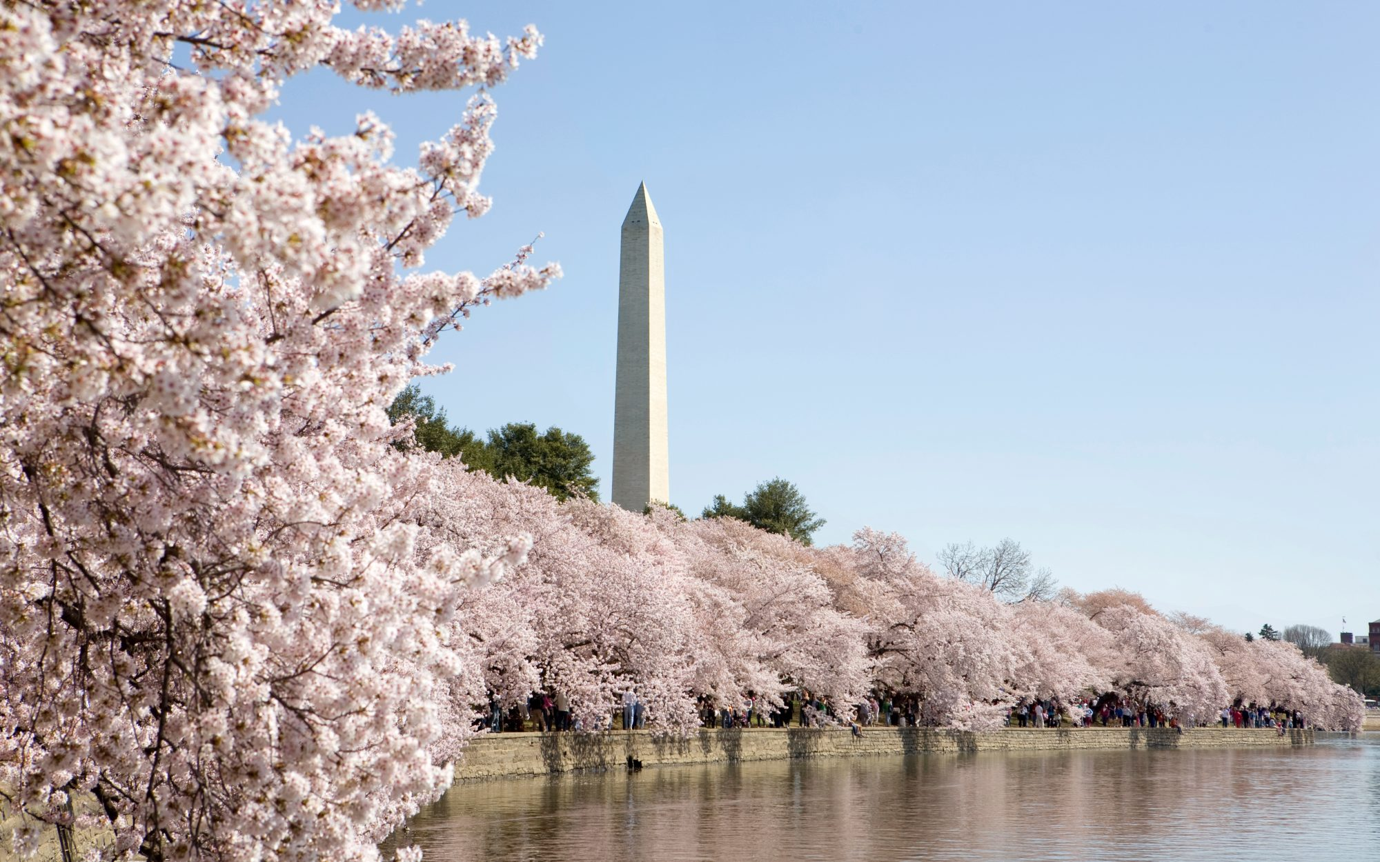 The Perfect Weekend in Washington, D.C.