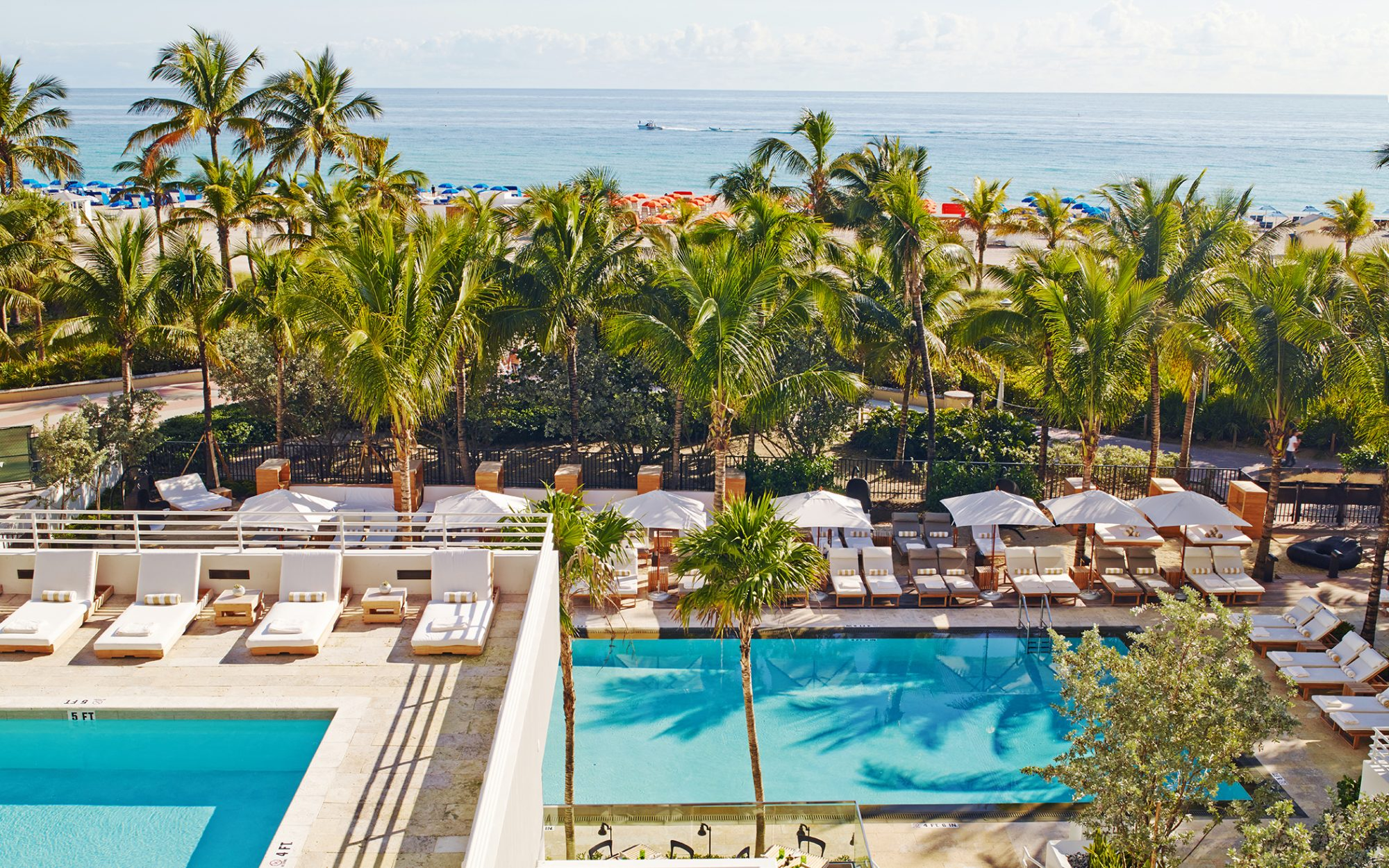 Tribute Portfolio Celebrates At The Royal Palm South Beach, Its First Property