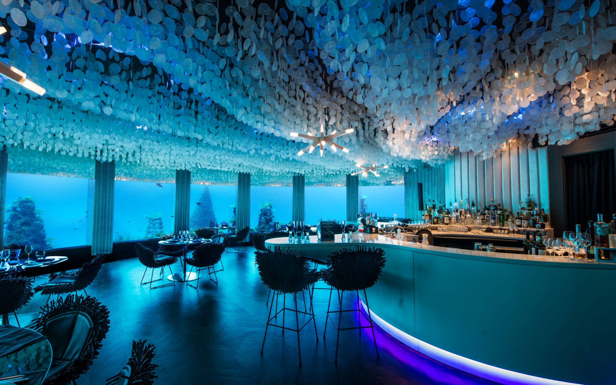 Explore the Maldives's Underwater Restaurant and Club