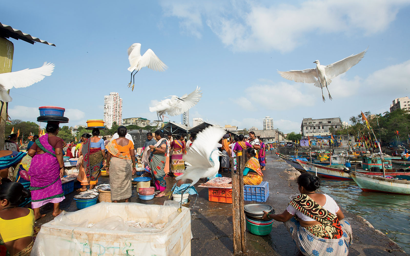 An Early Morning in Mumbai's Ferry Wharf and Fish Market