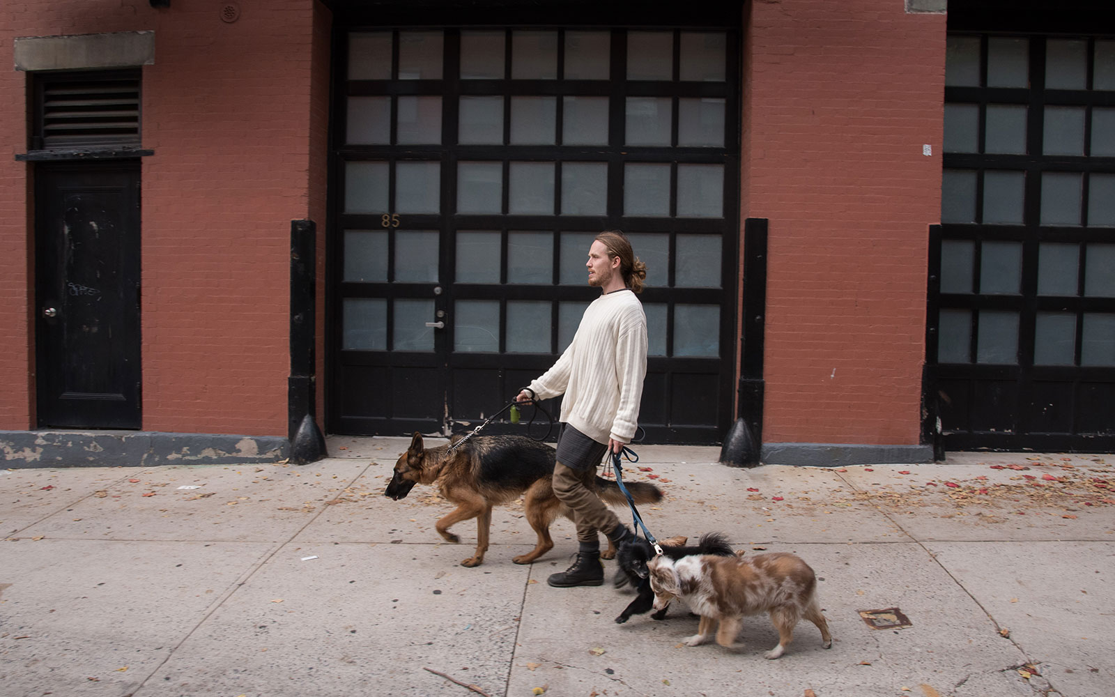 West Village dog walking