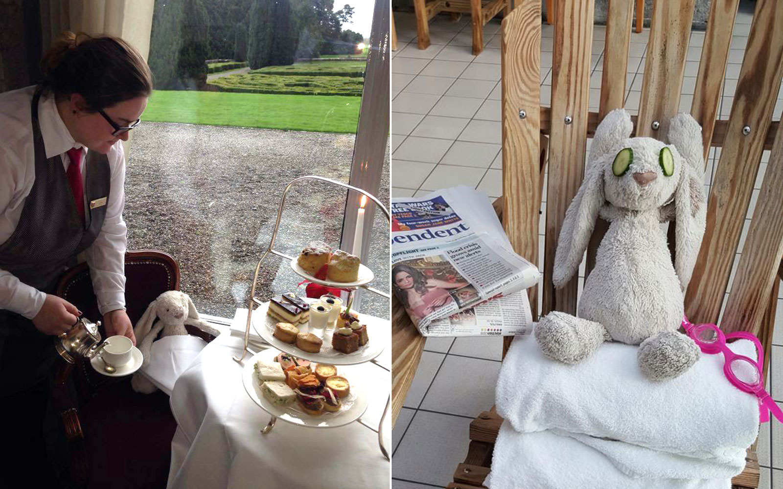 Irish Hotel Helps a Little Bunny Find its Way Home