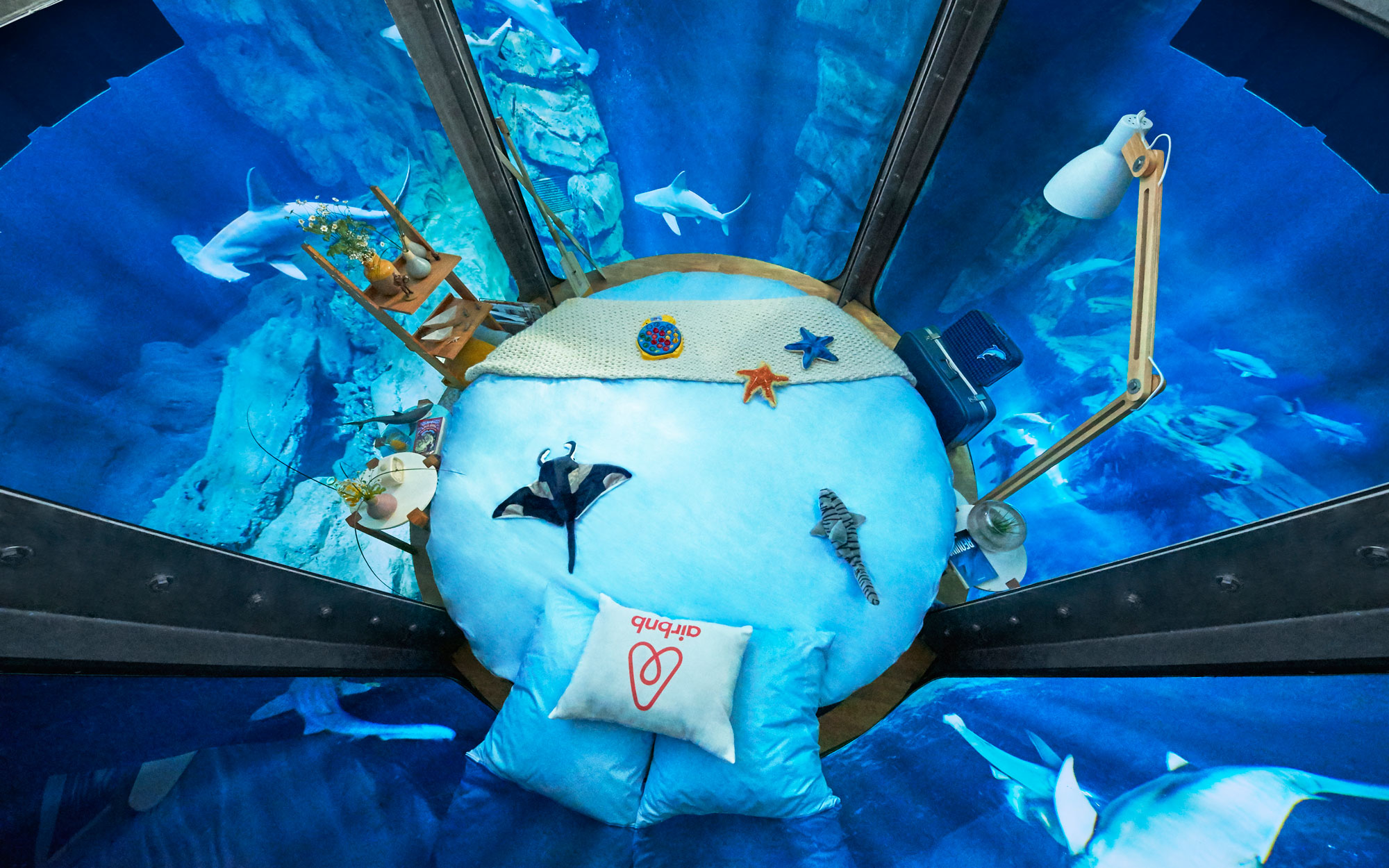 Sleep With the Sharks in a New Underwater Airbnb