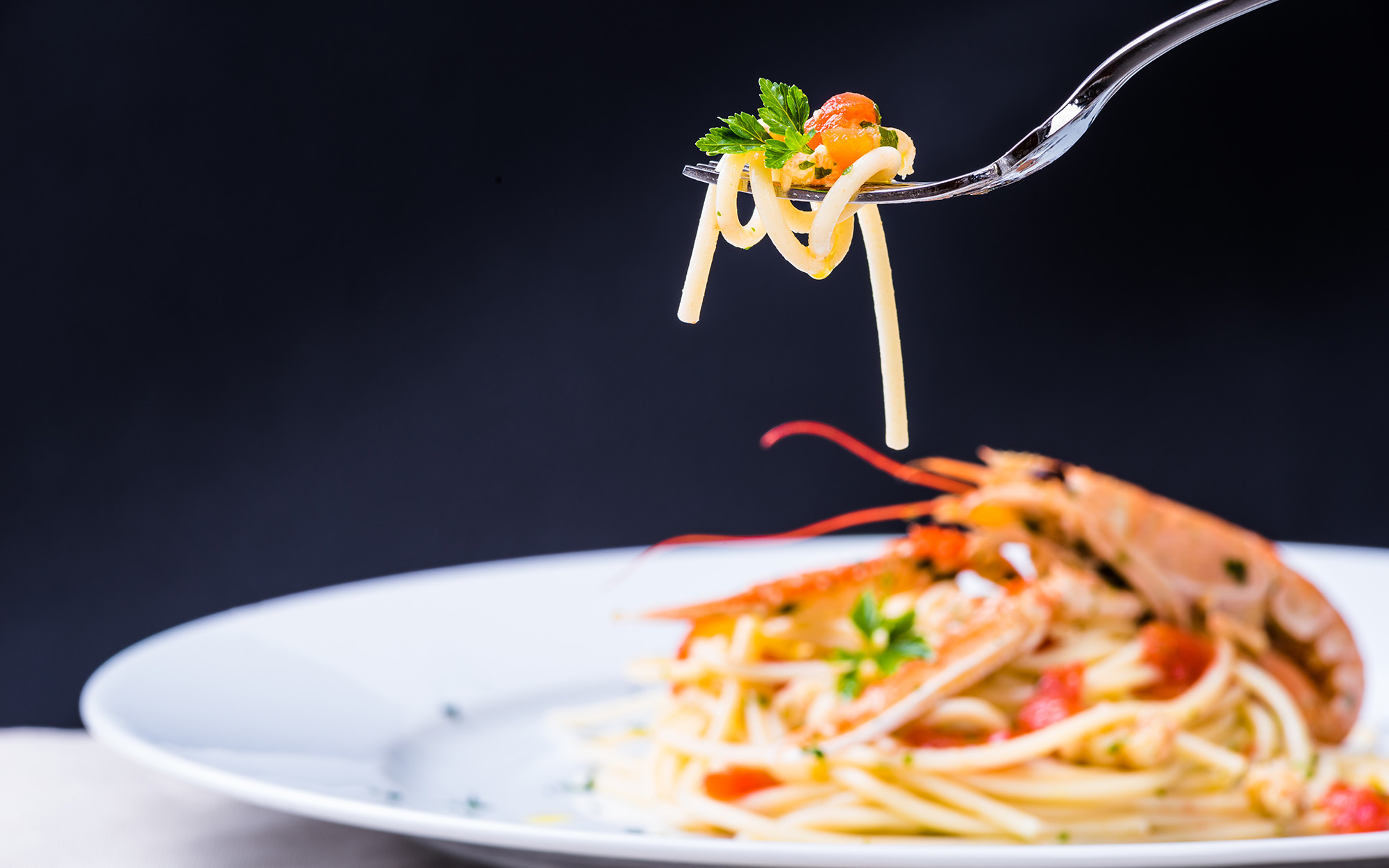 Plate with seafood spaghetti and pasta on fork.