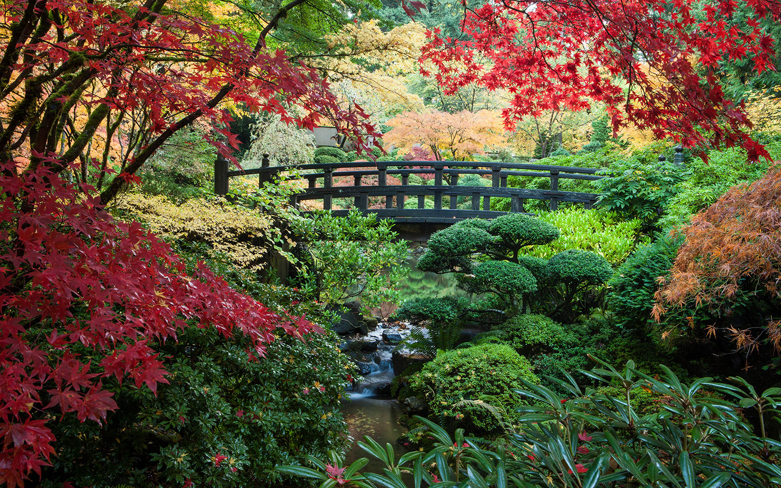 201405-w-beautiful-gardens-portland-japanese-garden