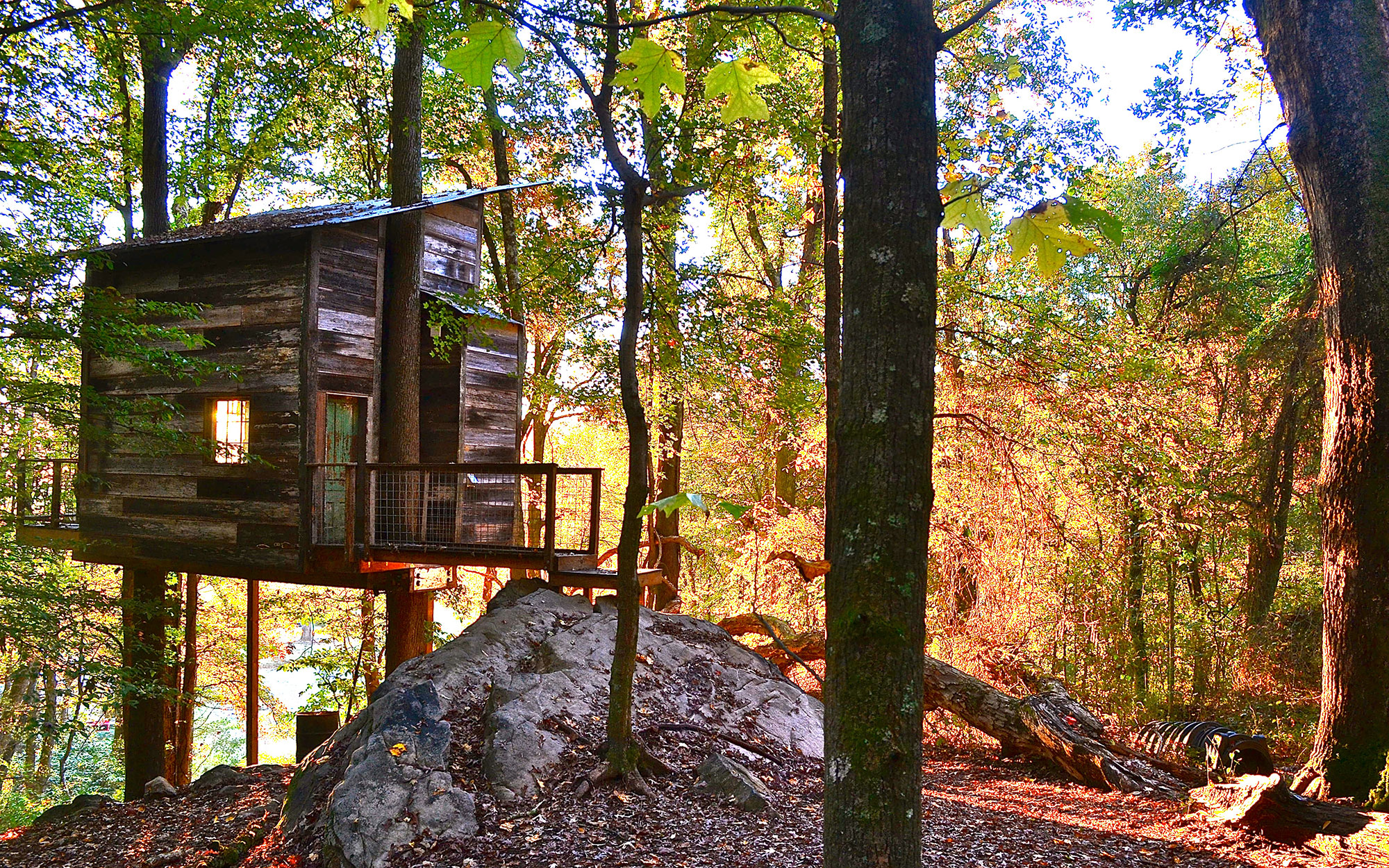 Tree Top Hideaways