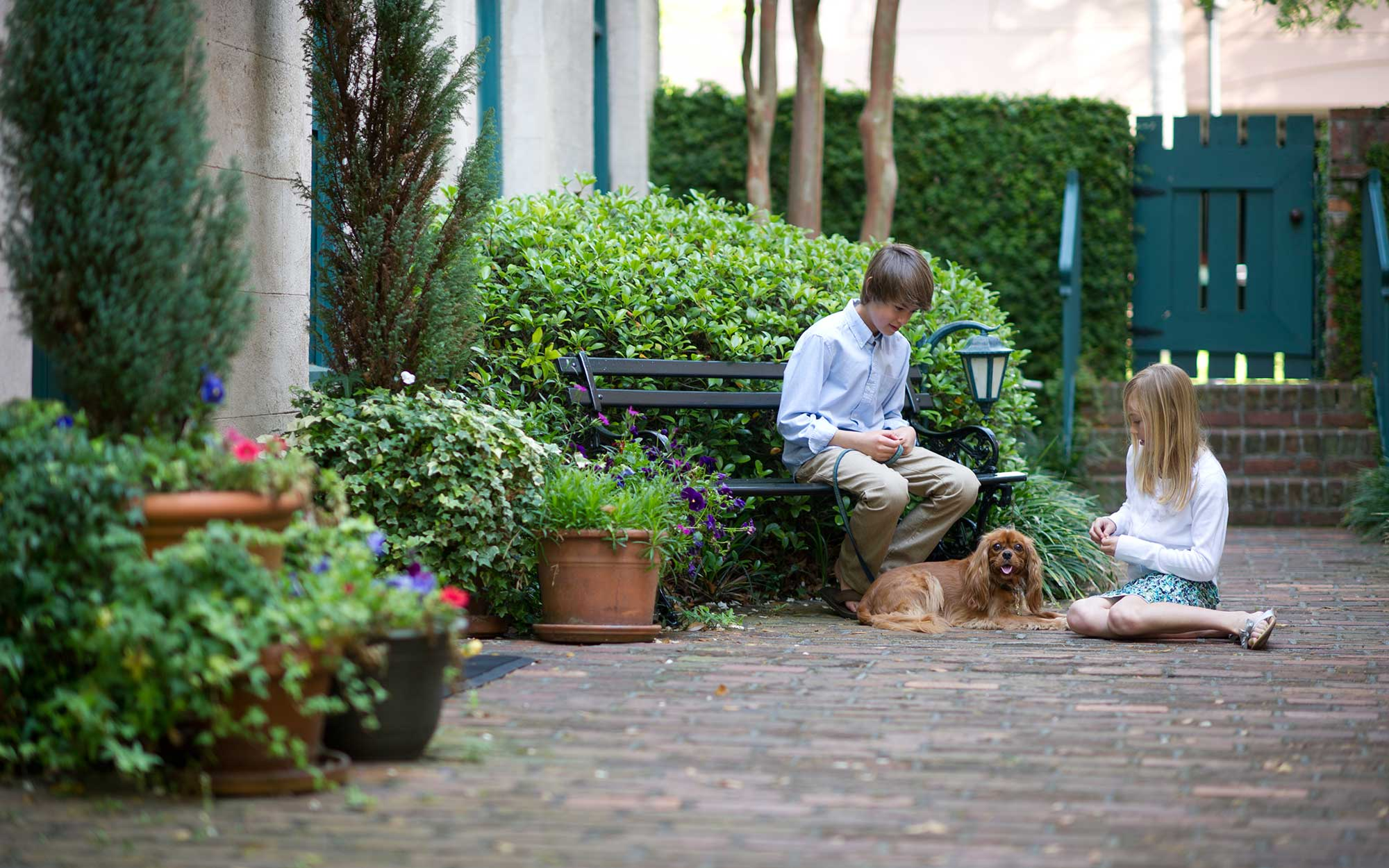 A Dog-Friendly Travel Guide to Visiting Charleston