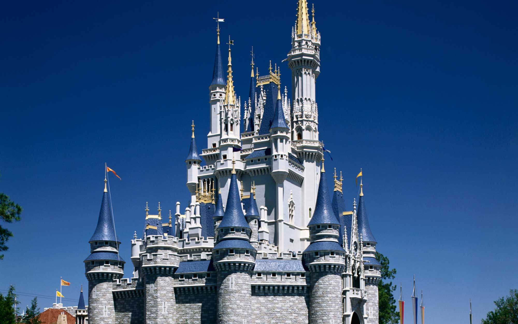 You Can Now Get Married Inside Disney's Magic Kingdom