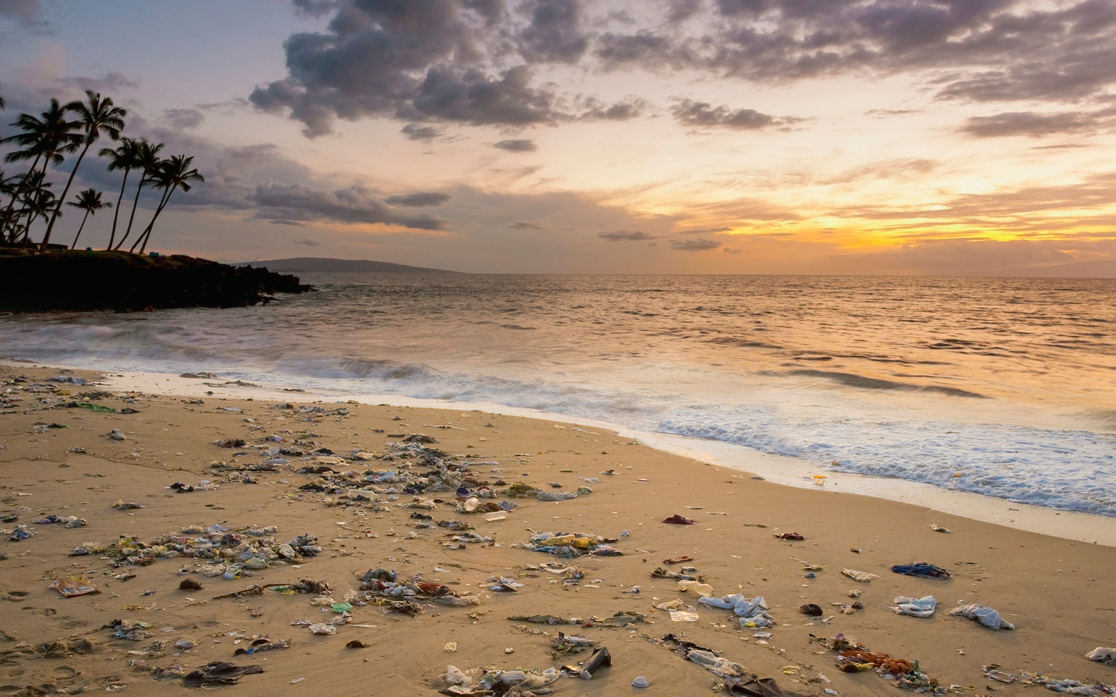 New Aerial Survey Reveals Hawaii's Beaches are Littered With Garbage