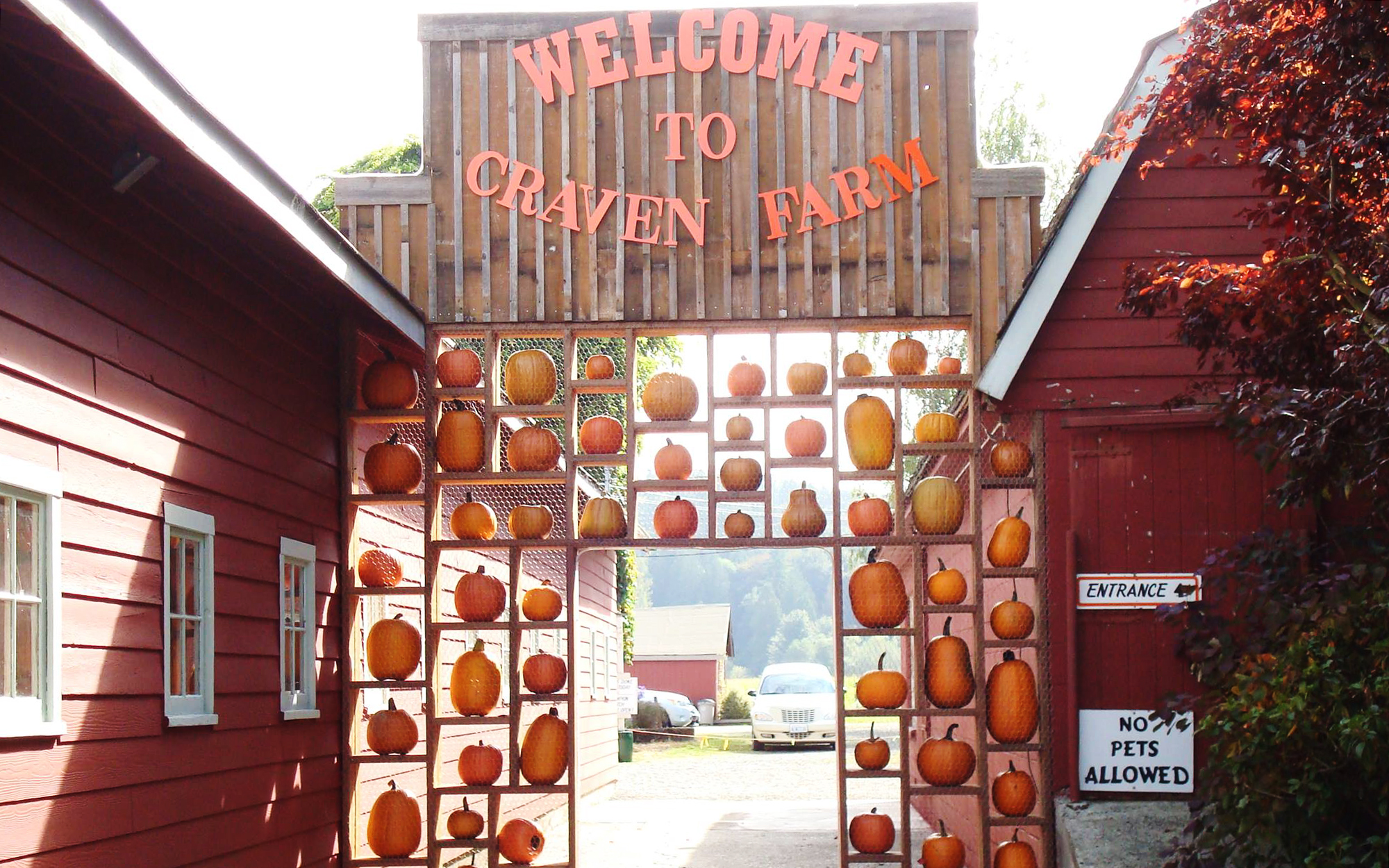 America's Best Pumpkin Farms