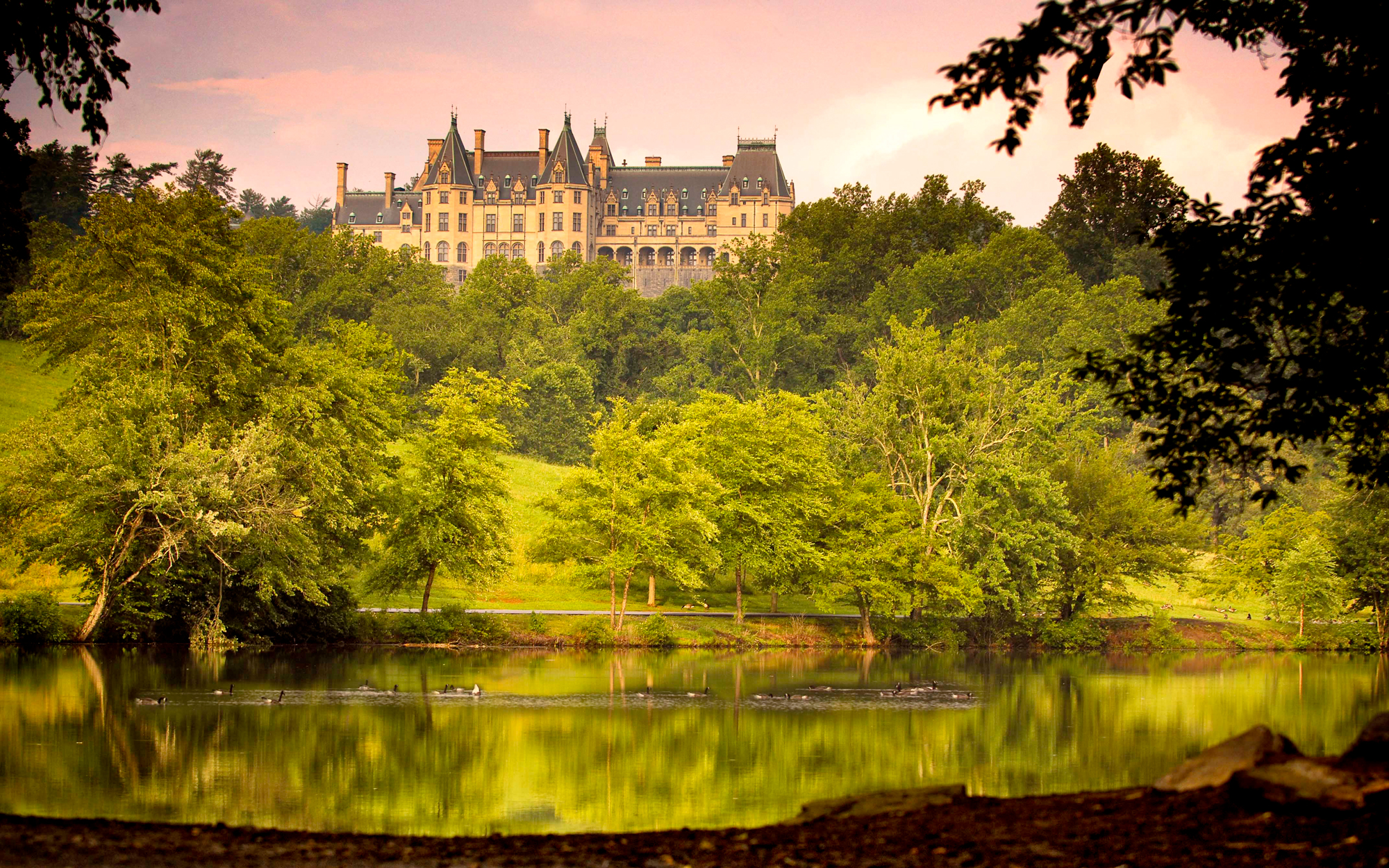 The History and Charm of North Carolina's Biltmore Estate