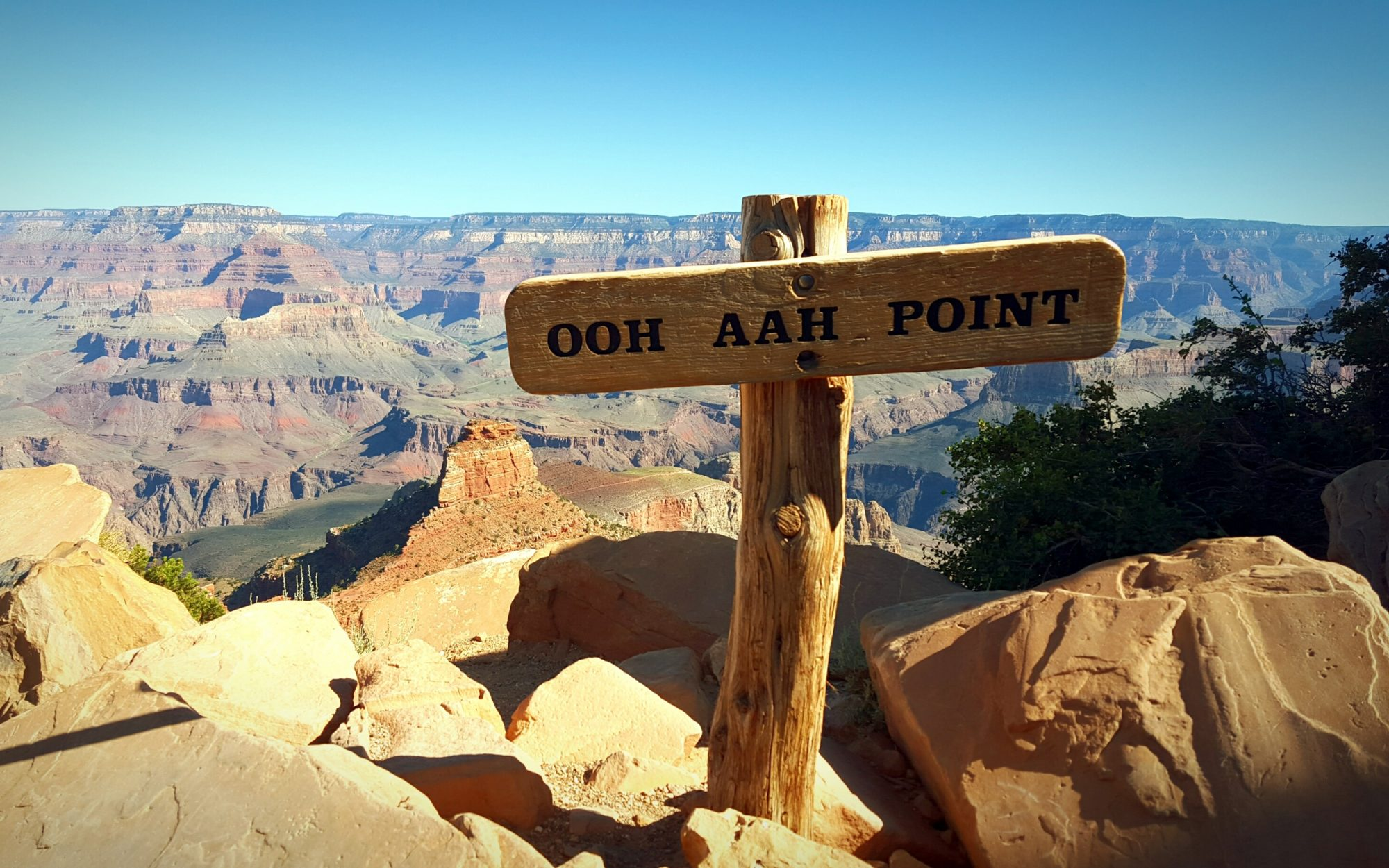 Woman Falls to Her Death After Taking Photo at the Grand Canyon