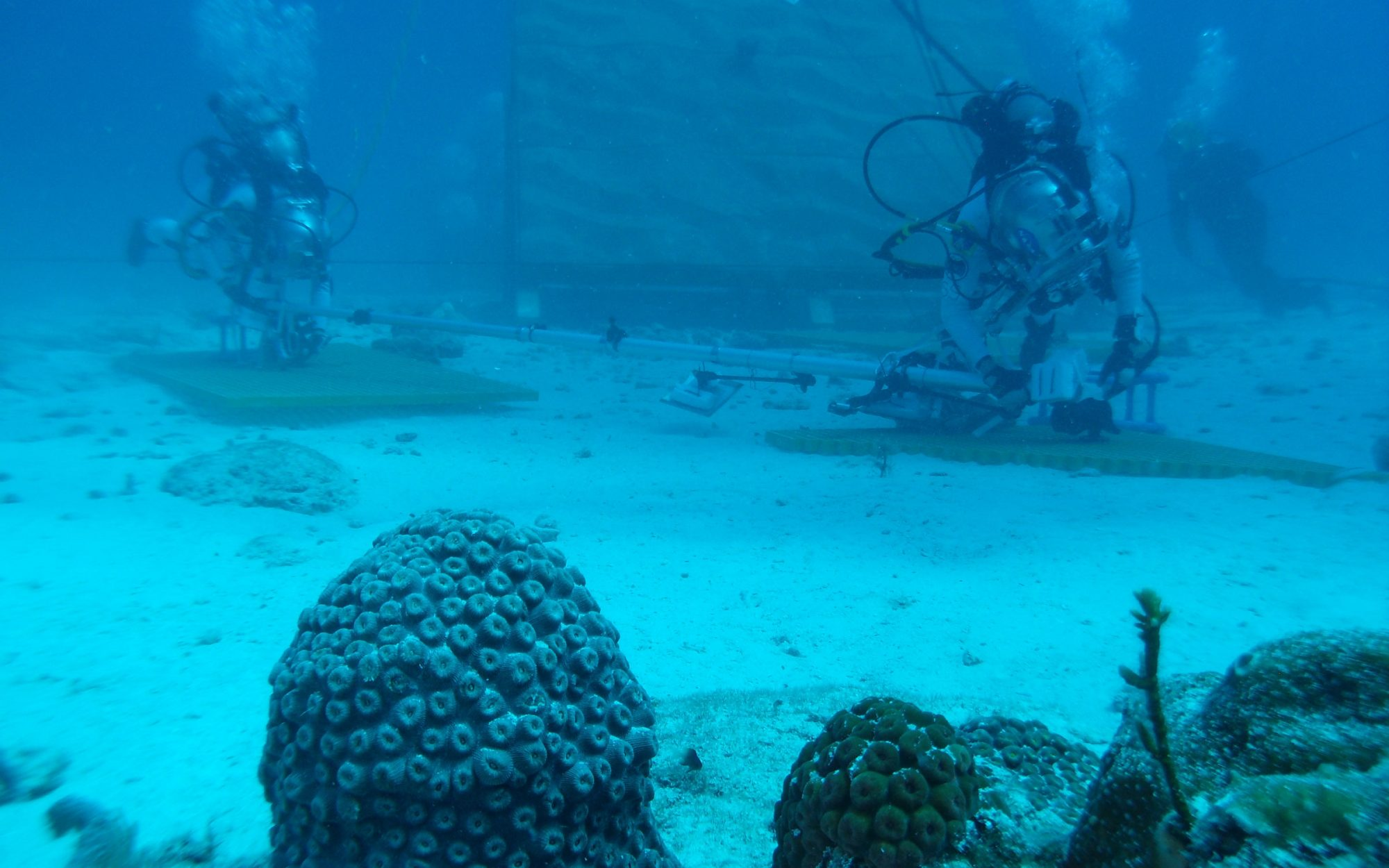 How to Visit the Florida Keys Like a NASA Aquanaut