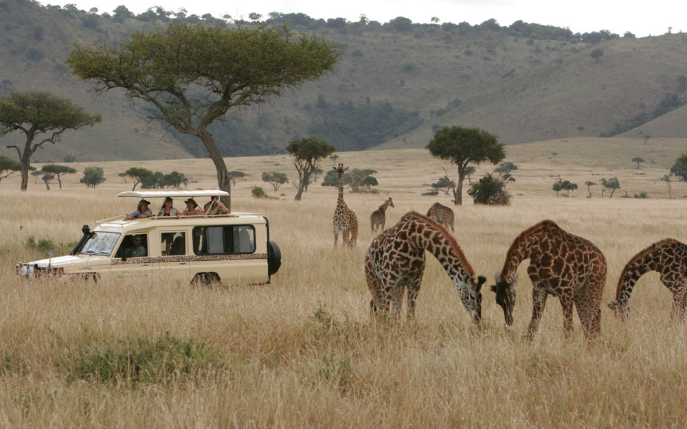 The Evolution of Safari Travel