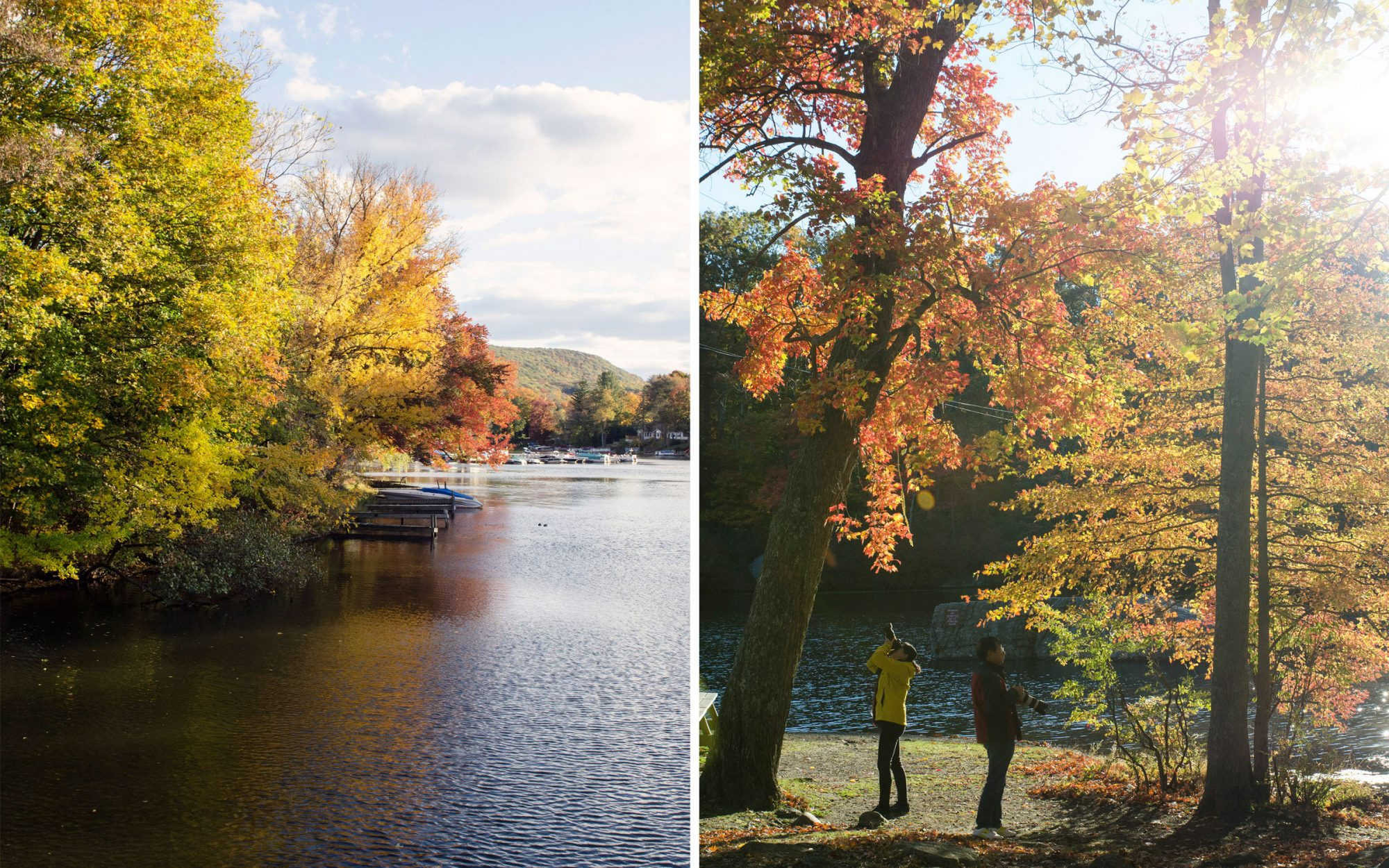 How to be a Leaf Peeper