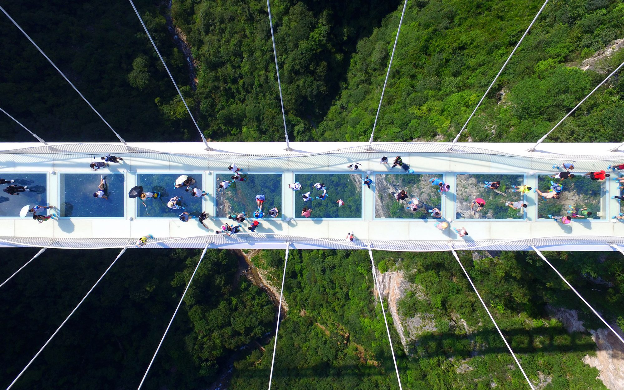 World's Highest Glass Bridge in China Reopening to Tourists