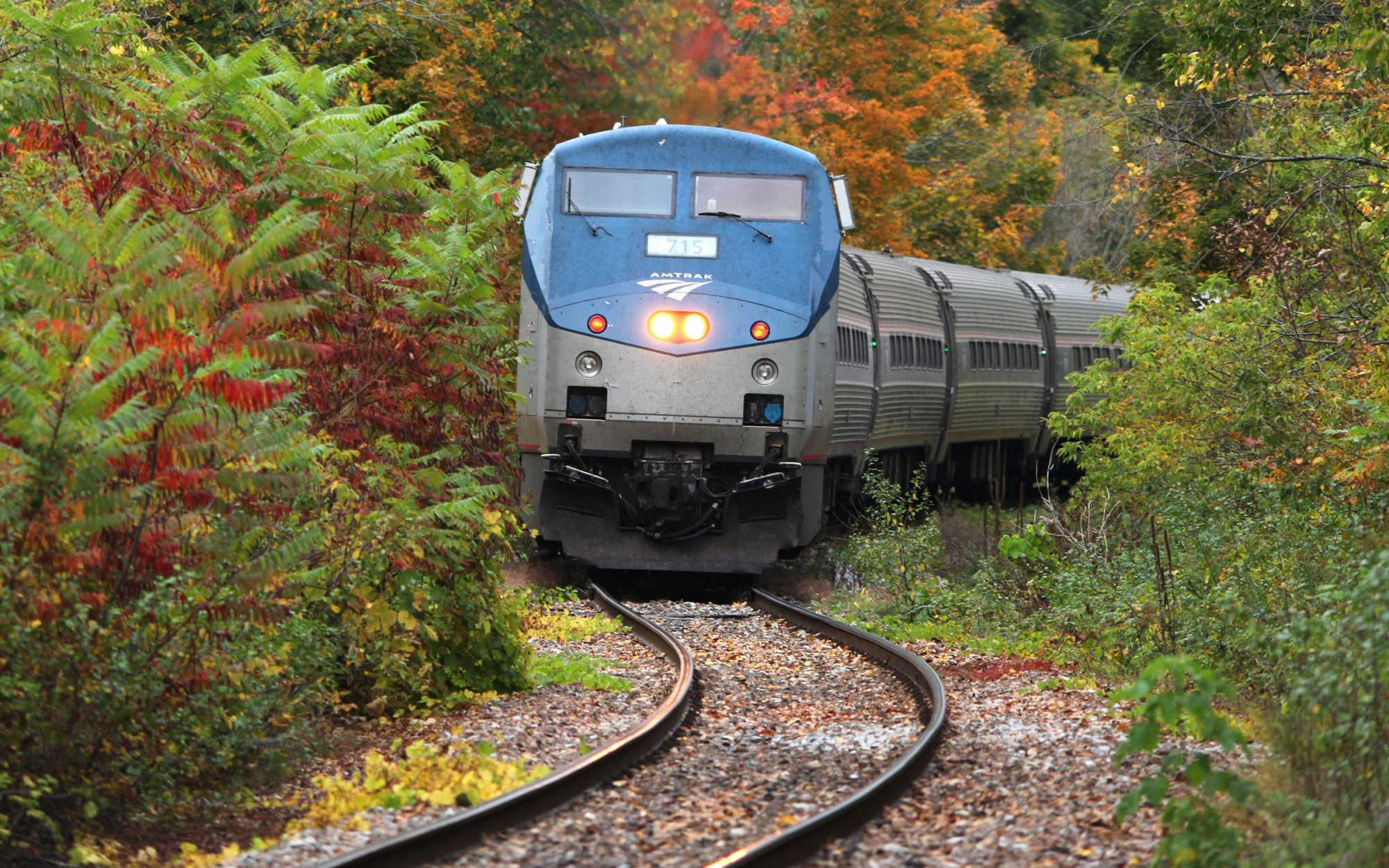 Buy Your Tickets Now for the Amtrak Autumn Express