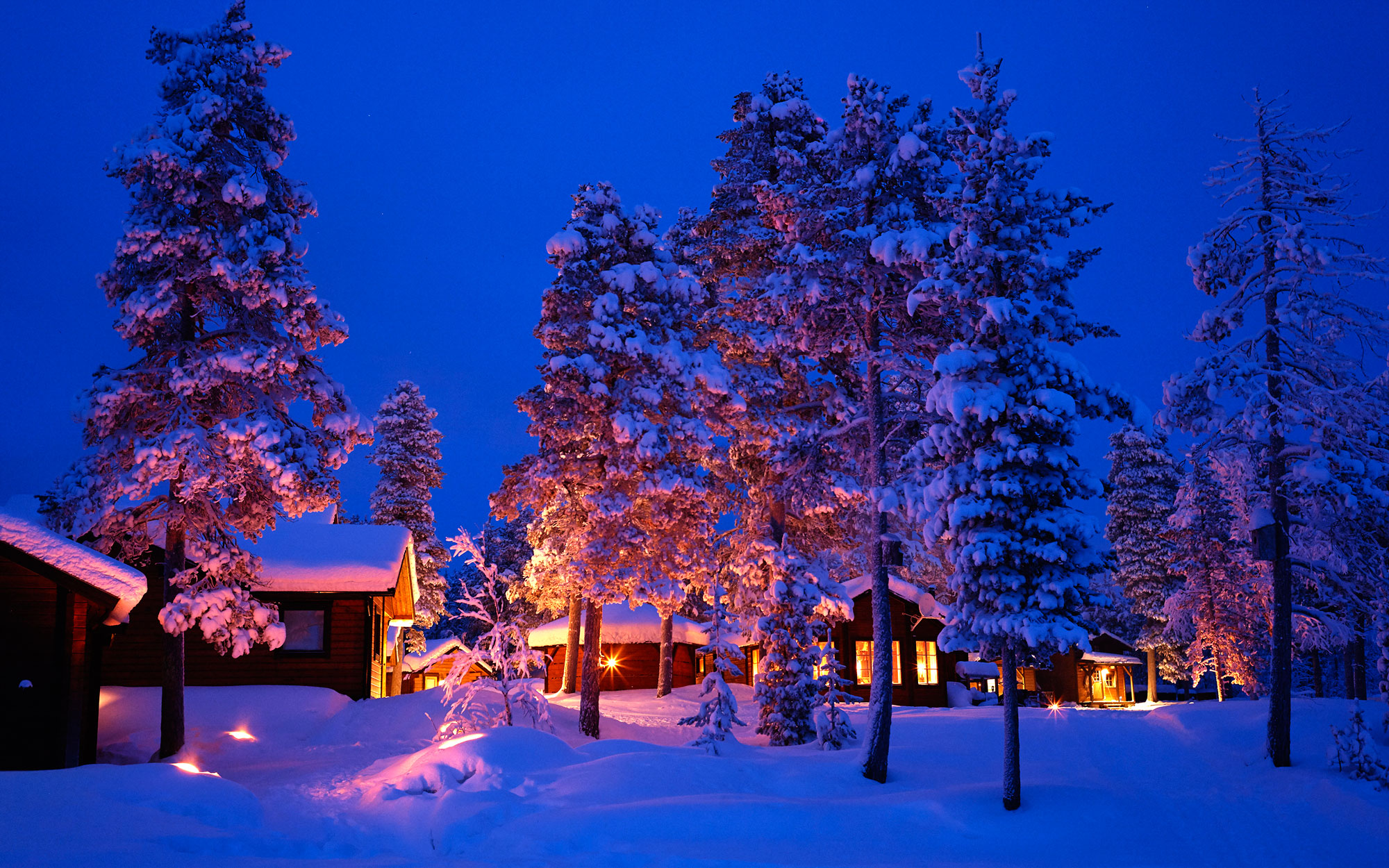 A Snowy Escape in Swedish Lapland